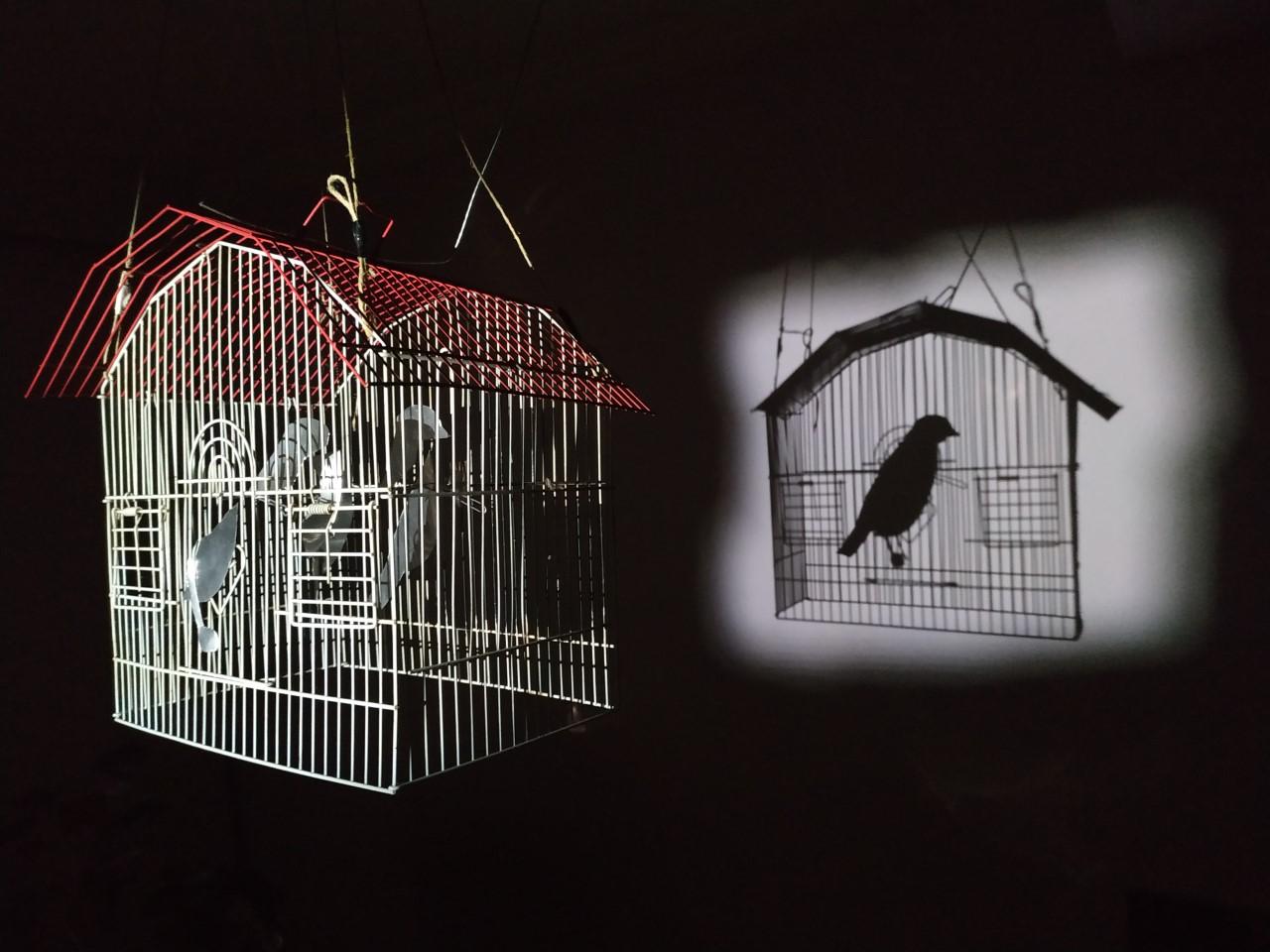 Ξάνθη: Η τέχνη της σκιάς – Εκπληκτικά έργα εμπνευσμένα από την καραντίνα του 2021 (pics)