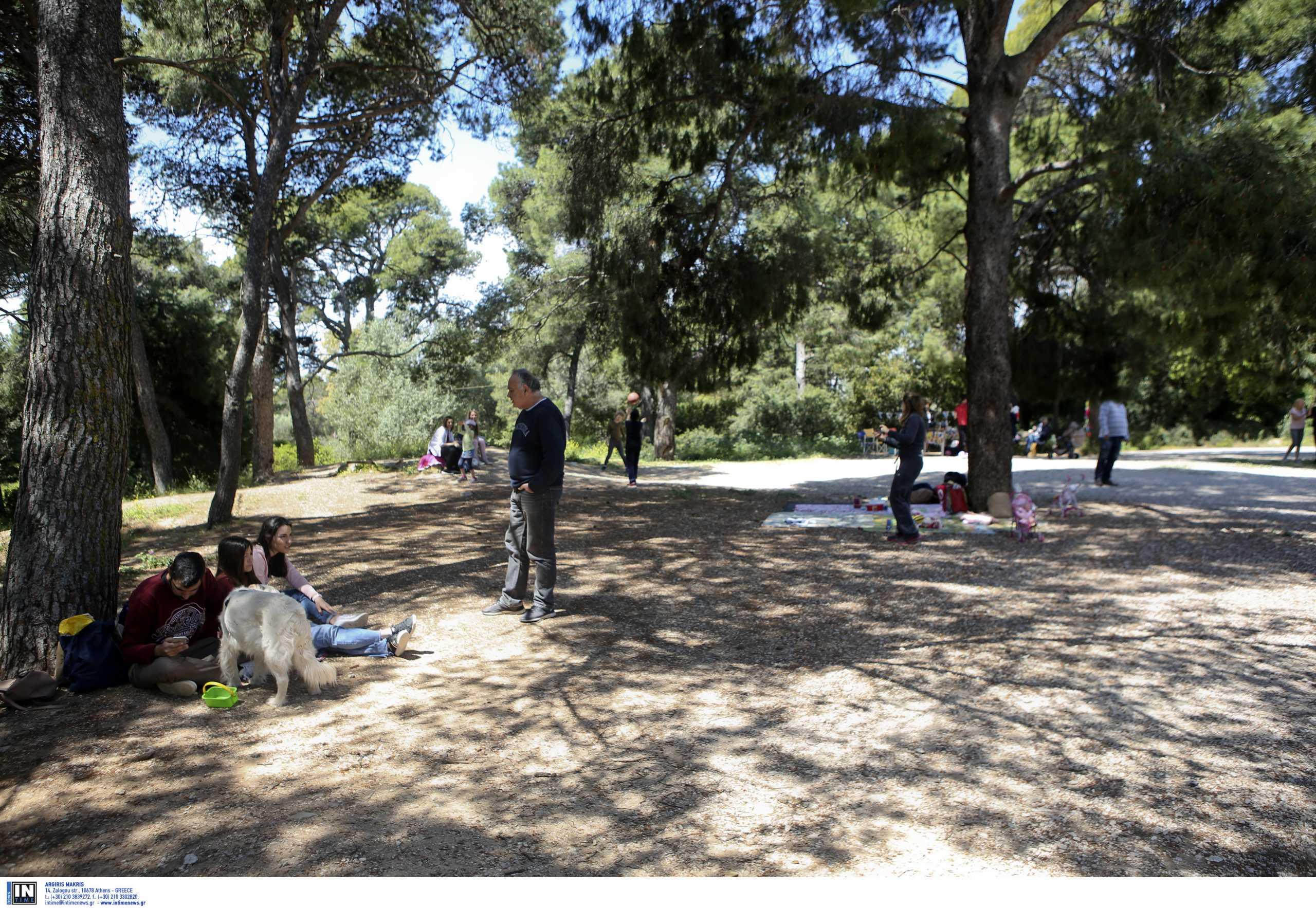 Βόλτα στην Αττική: Εξερεύνησε το εντυπωσιακό Άλσος Συγγρού
