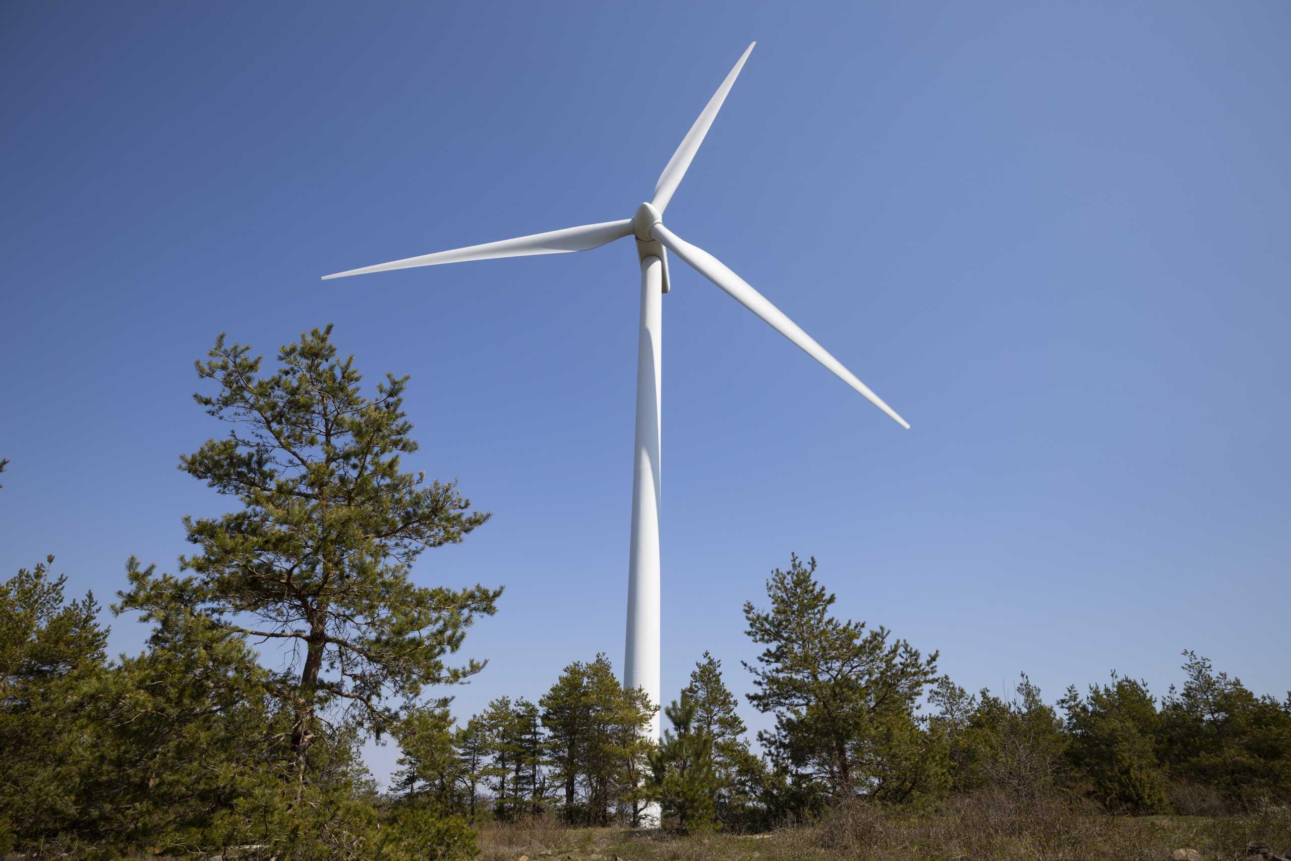Τέρνα Ενεργειακή: Αύξηση κύκλου εργασιών και κερδοφορίας εν μέσω πανδημίας