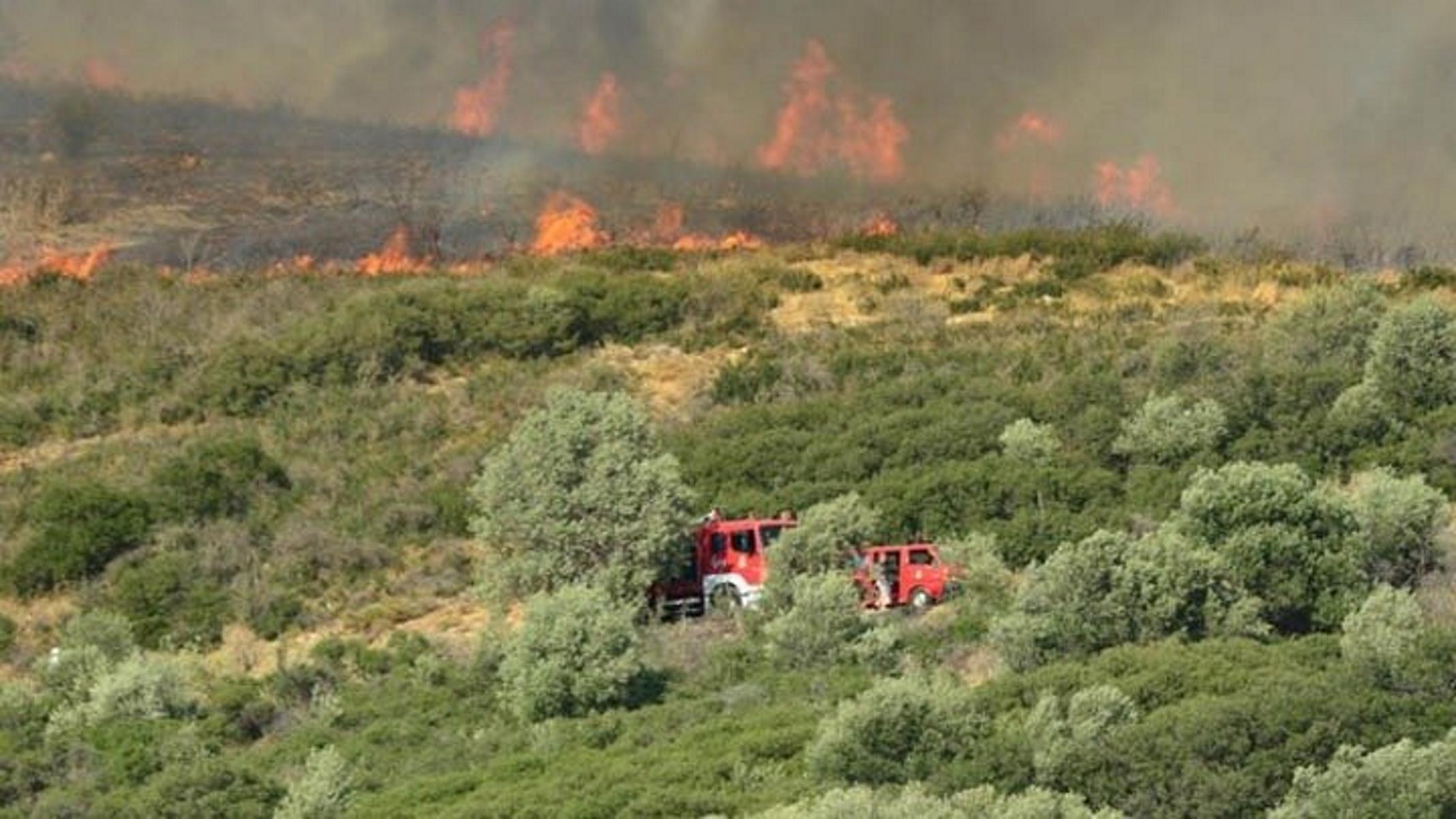 Φωτιά στο Πήλιο κοντά σε χωριό