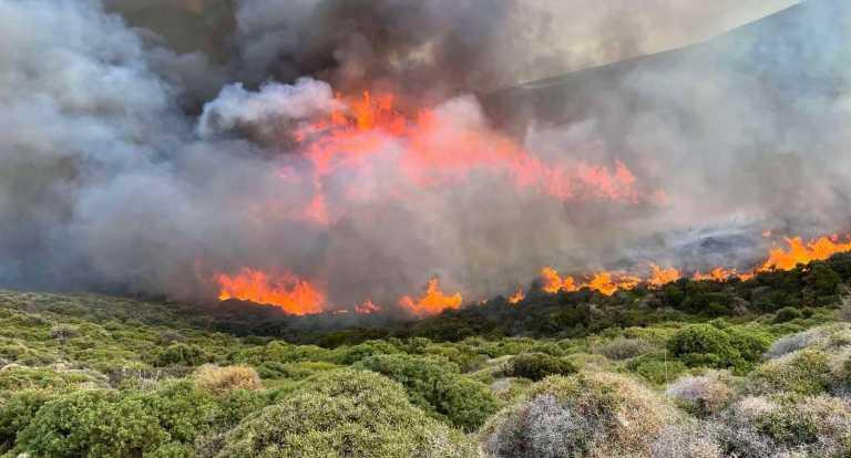 Σε εξέλιξη δασικές φωτιές σε Κορινθία και Ηλεία – Μάχη με το χρόνο από τους πυροσβέστες