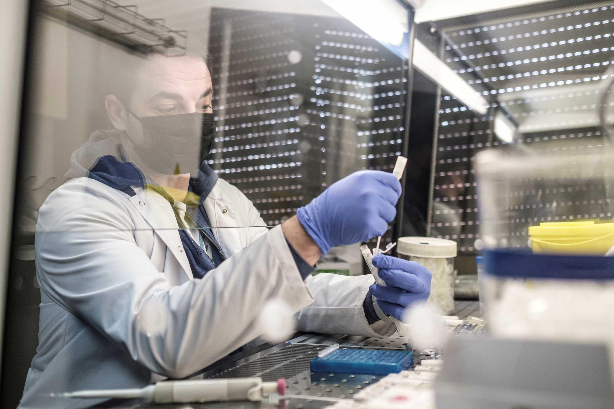 Δερμιτζάκης: Ελάχιστες οι πιθανότητες για φάρμακο κατά του κορονοϊού μέχρι τέλος του έτους (vid)