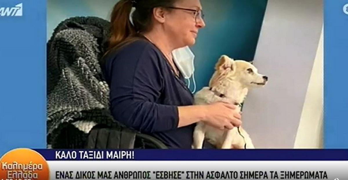 Μαίρη Μάτσα: Ποια είναι η συνεργάτιδα του Παπαδάκη που σκοτώθηκε σε τροχαίο (pics, vid)
