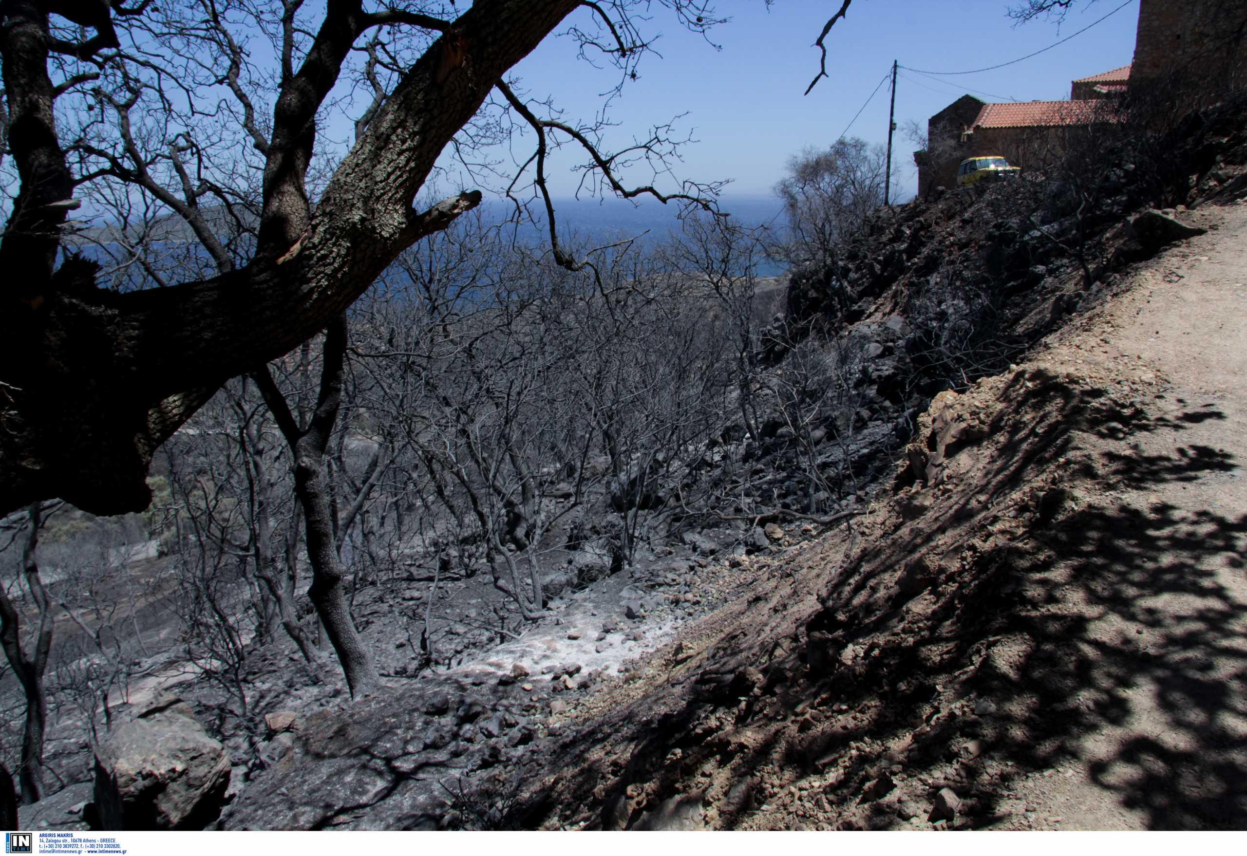 Μάνη: Μεγάλη φωτιά στην Κοκκάλα  – Στην μάχη και δυο αεροσκάφη