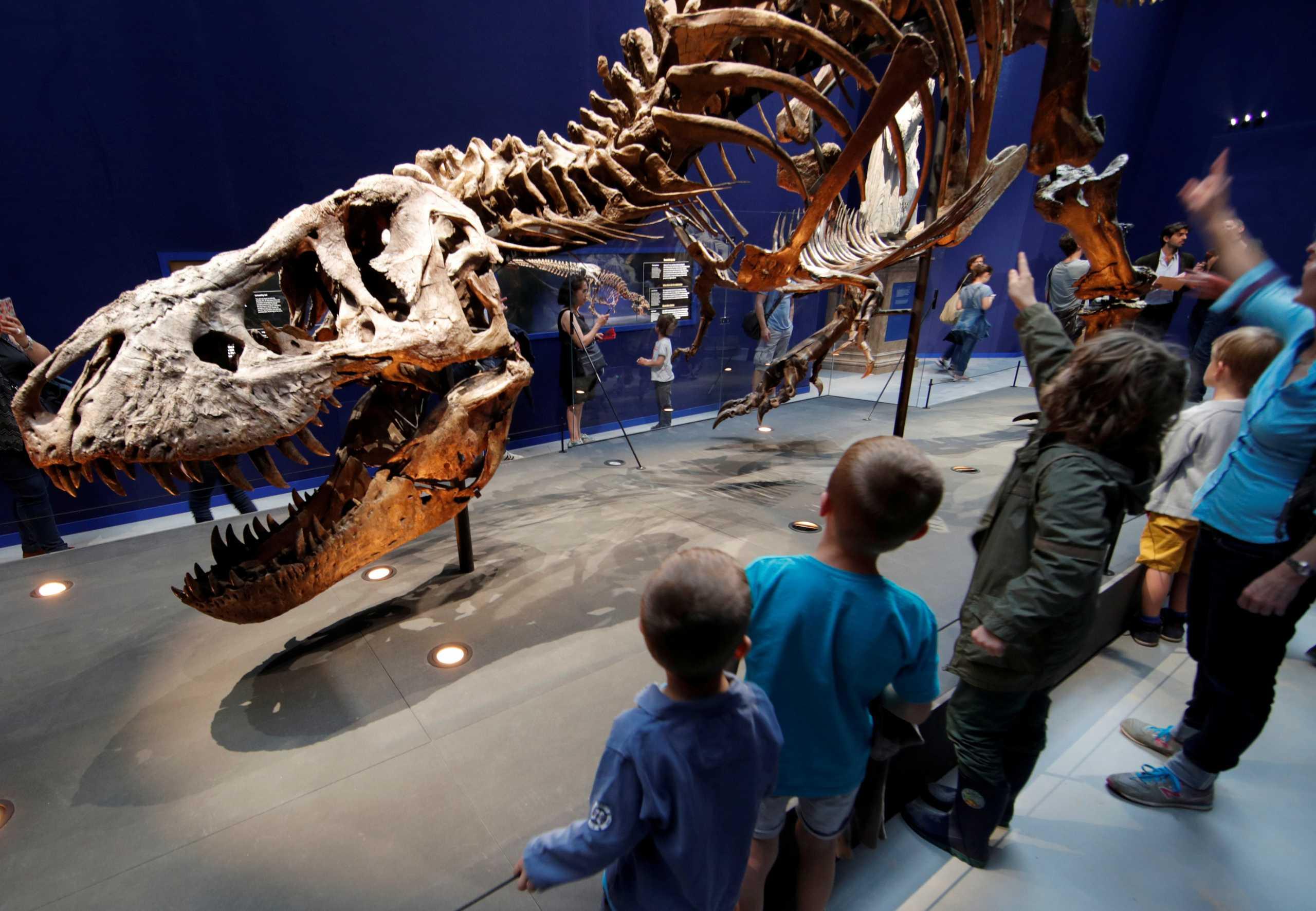 Απέραντο… Τζουράσικ Παρκ η Γη με 2,5 δισ. Τυρρανόσαυρους