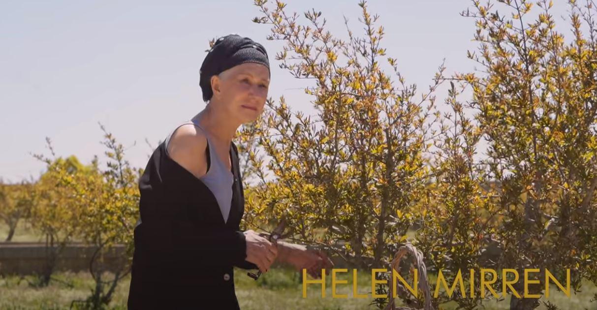 La Vacinada: Το viral βίντεο με την Έλεν Μίρεν να προωθεί το εμβόλιο κατά του κορονοϊού