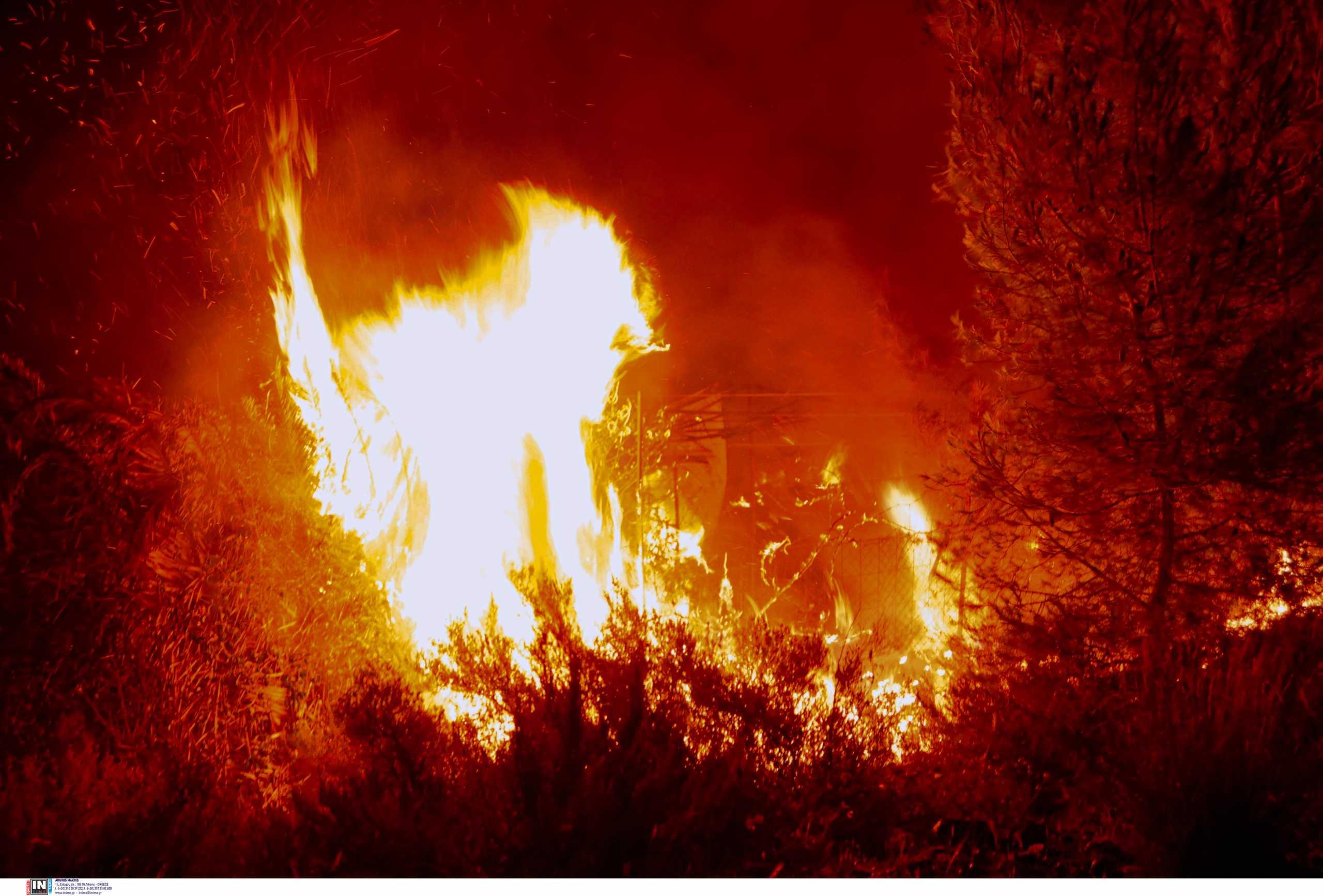 Φωτιά στα Γεράνεια Όρη – Συγκλονίζει ο Αττικάρχης της Πυροσβεστικής: Εγκλωβιστήκαμε, κάθε λεπτό φαινόταν αιώνας