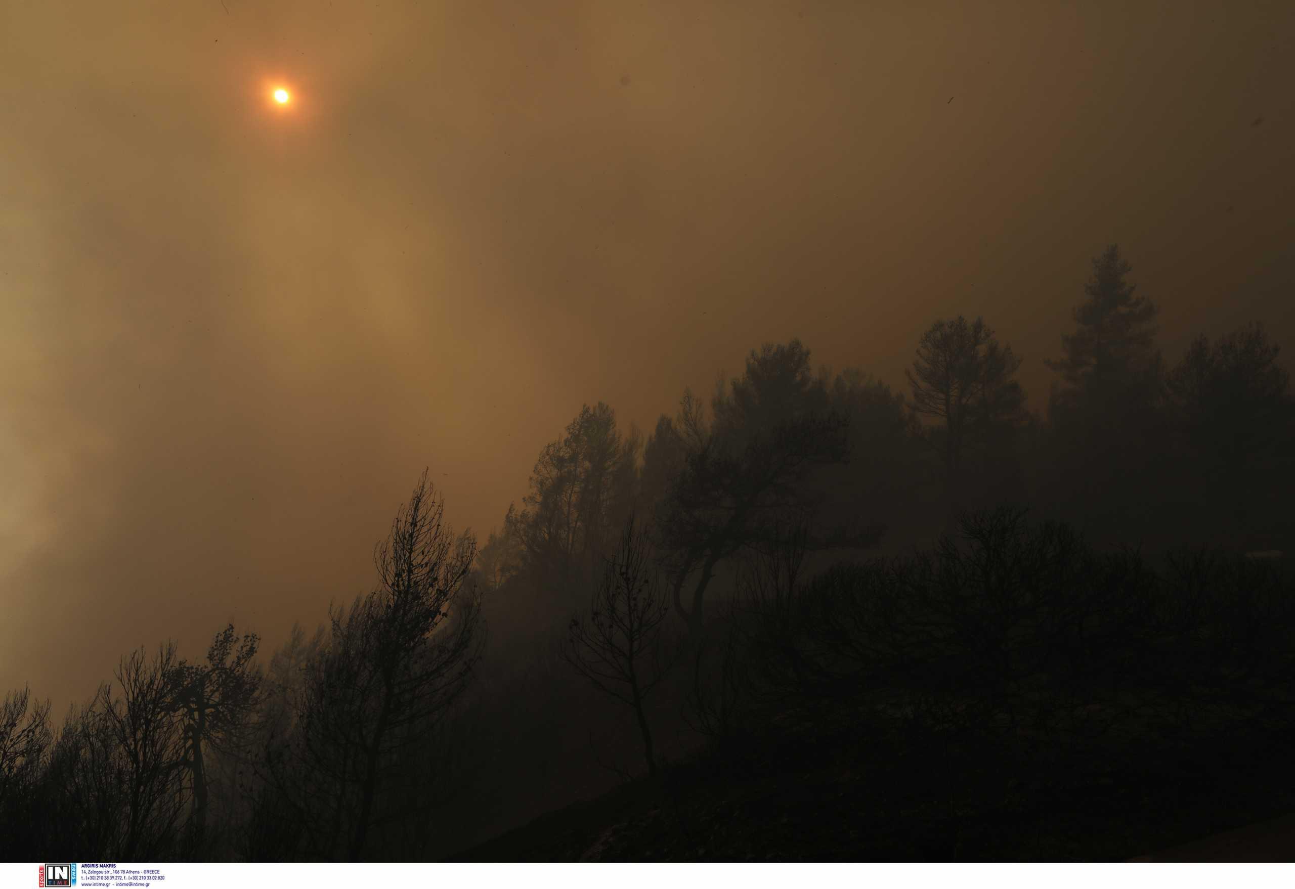 Φωτιά στην Κορινθία: Εκατοντάδες κάτοικοι εγκατέλειψαν τα σπίτια τους – «Τέτοια κόλαση δεν έχω ξαναδεί»