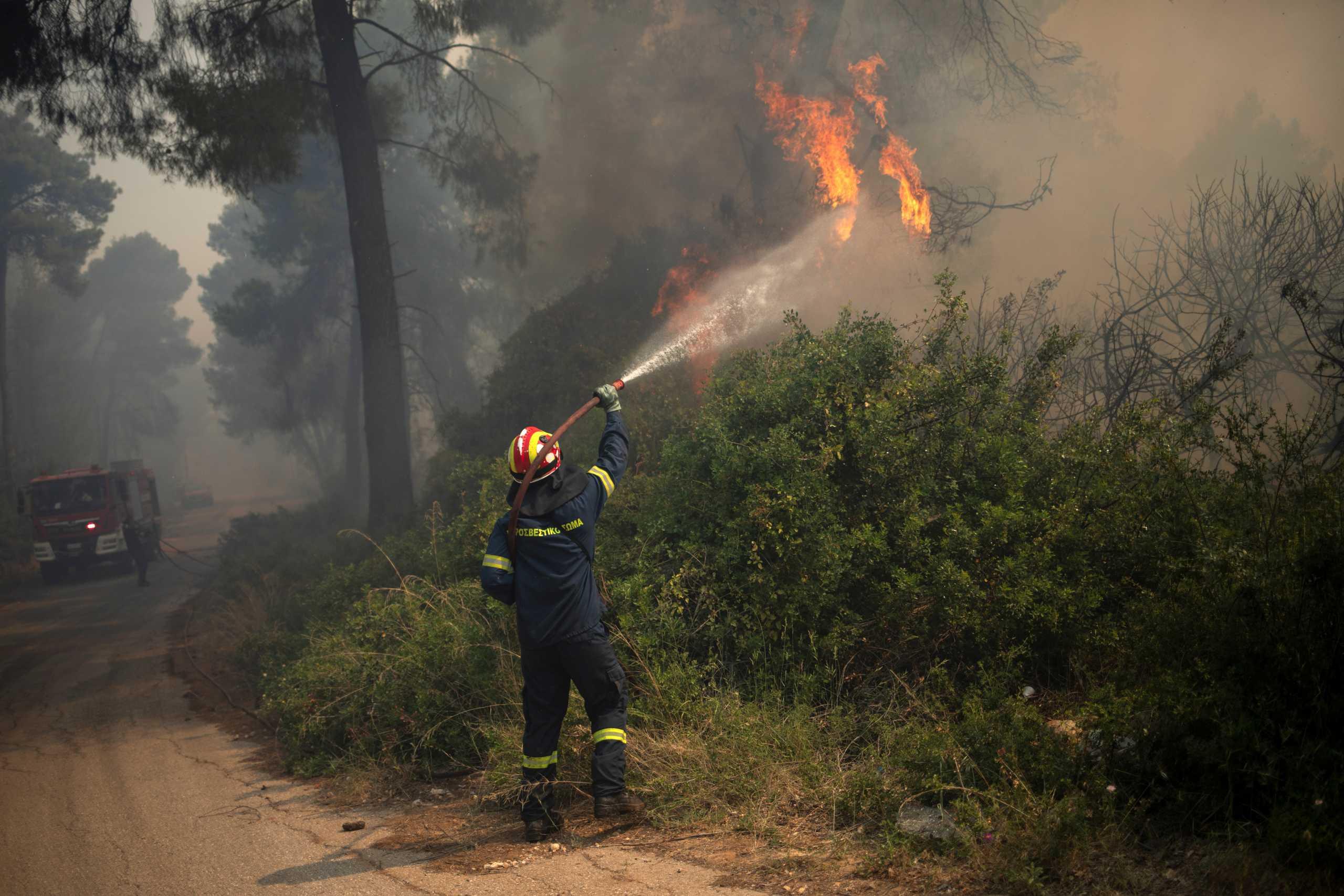 Αχαΐα: Φωτιά σε δάσος