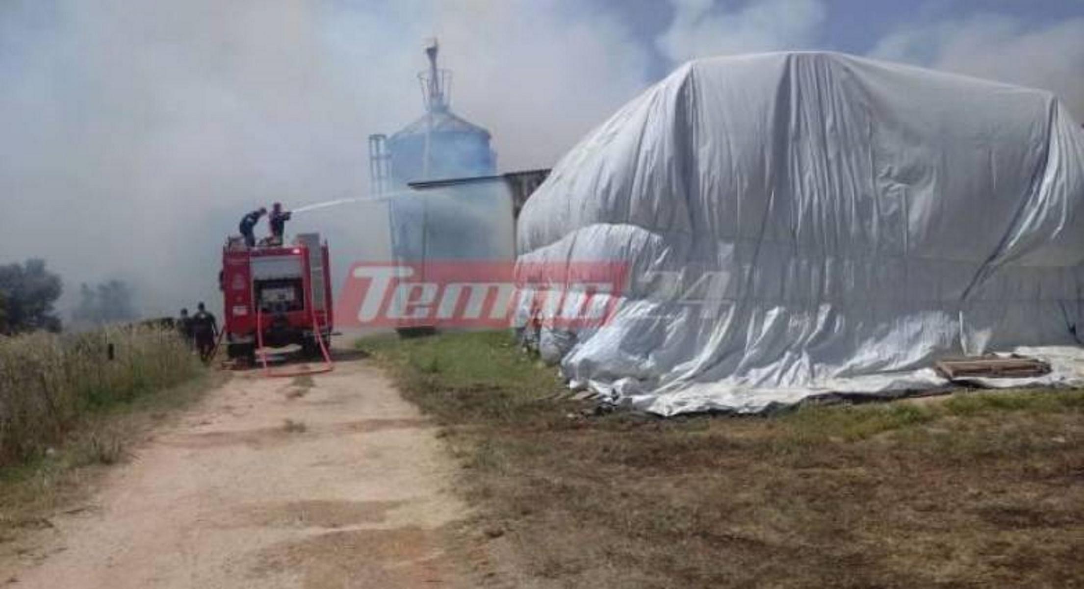 Φωτιά στην Αχαΐα: Κάηκαν μηχανήματα και αγροτικά εργαλεία – Τεράστια η καταστροφή (pics, vid)