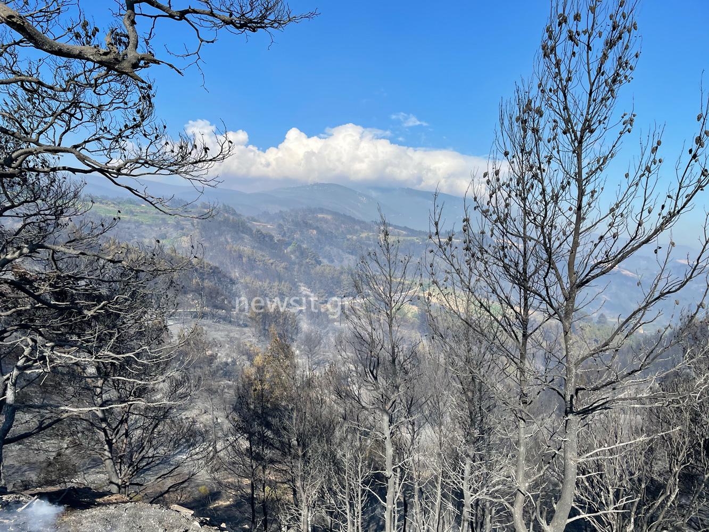 Φωτιά στην Κορινθία: Πολλές και ενεργές οι εστίες – Εκκενώθηκαν οικισμοί έξω από τα Μέγαρα