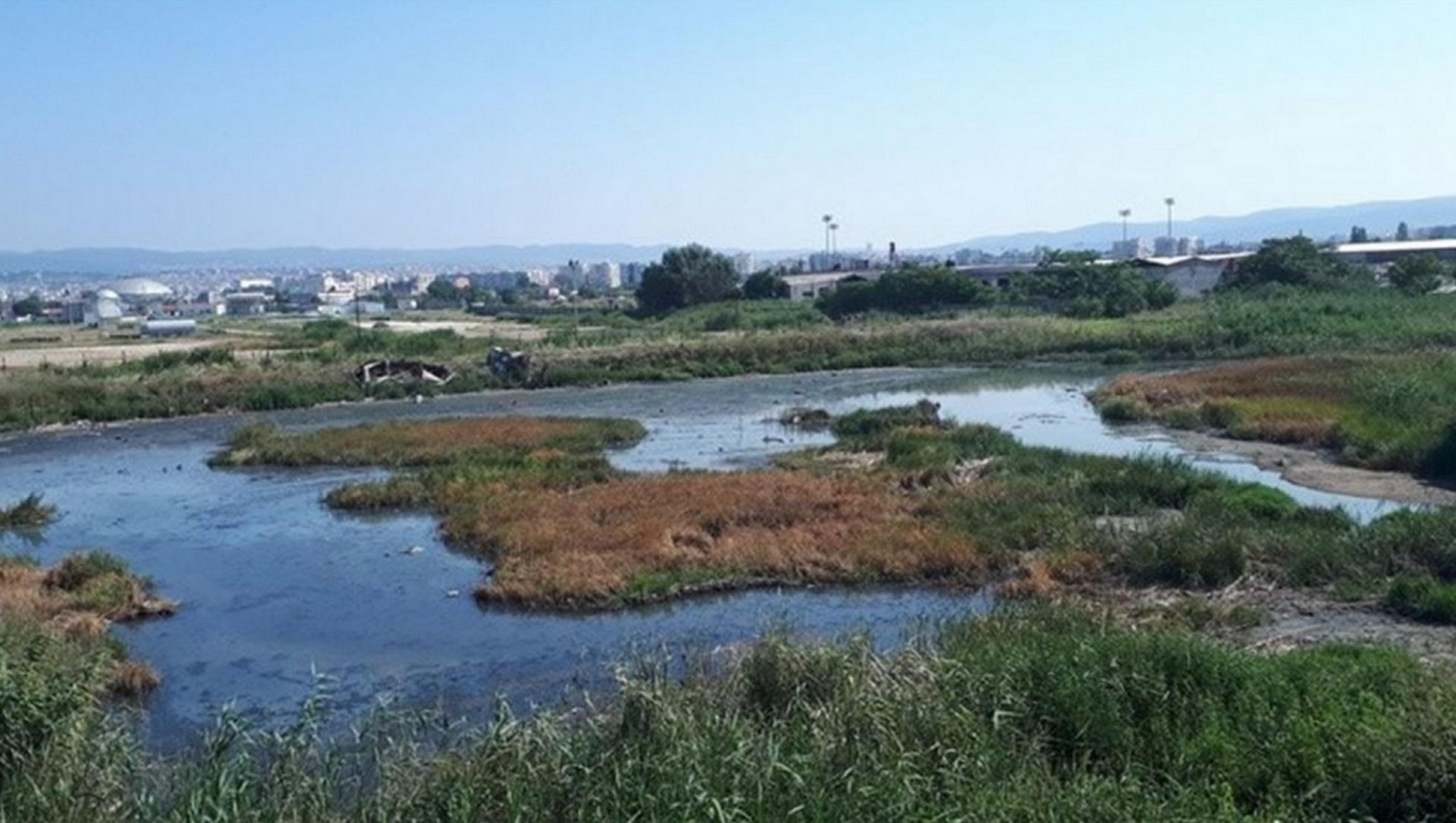 Θεσσαλονίκη: Η πηγή μικροβίων που προκαλεί αντιδράσεις – Ένας βούρκος γεμάτος σκουπίδια