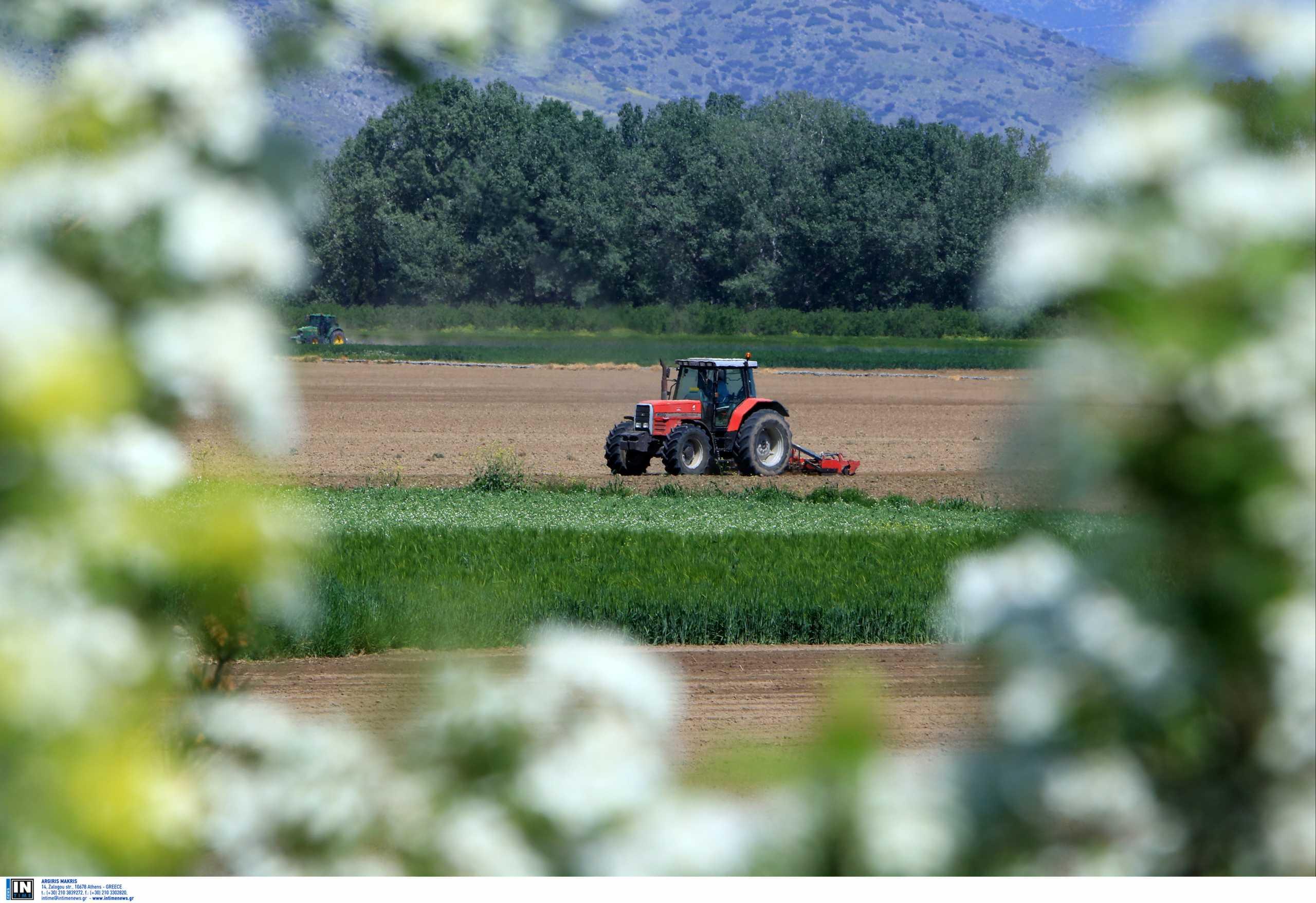 Ανοίγει ο Μεθοριακός Σταθμός Κρυσταλλοπηγής για την είσοδο εργατών γης