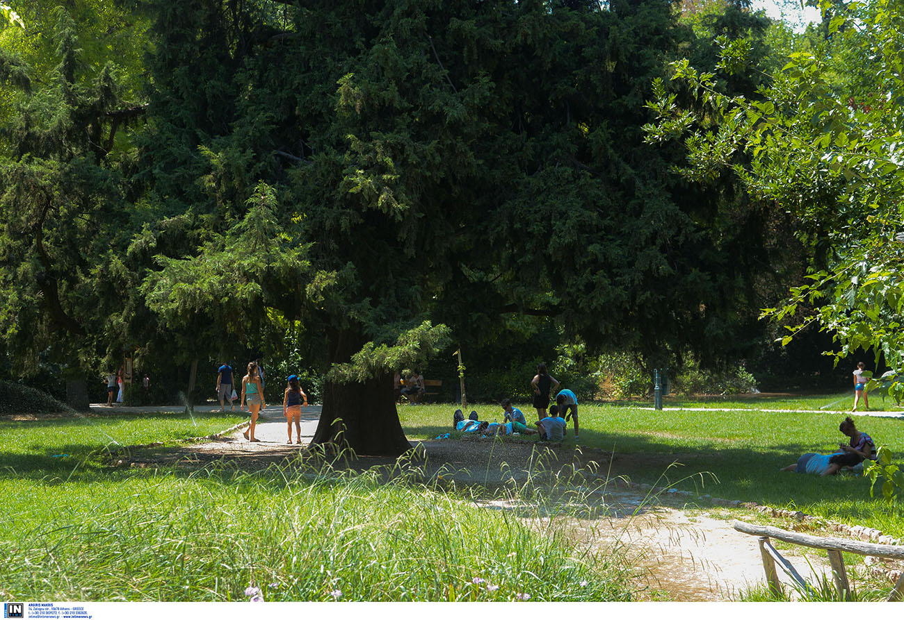Έρευνα για τη χρήση και την ποιότητα των χώρων πρασίνου στο πολεοδομικό συγκρότημα της Αθήνας