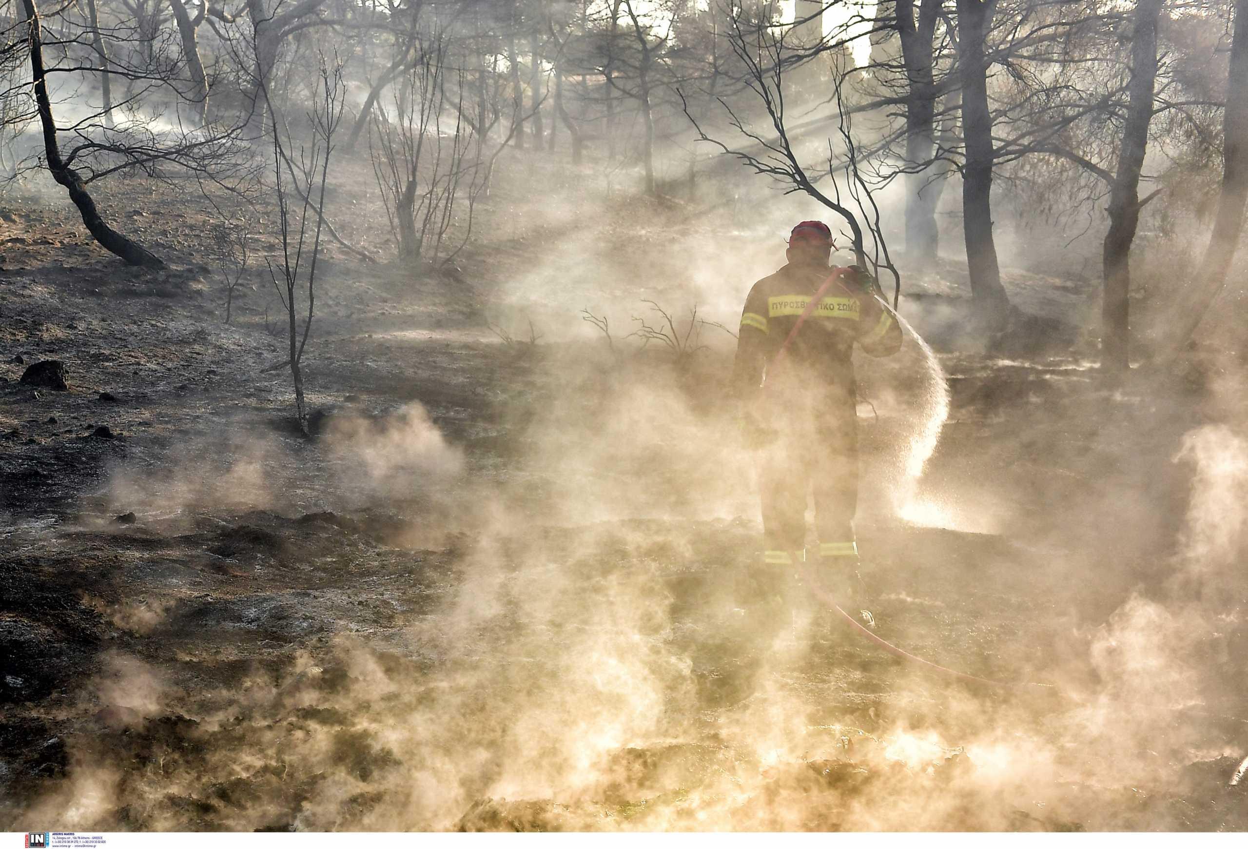 Φωτιά στο Σχιστό – Στα σύνορα με στην Νίκαια