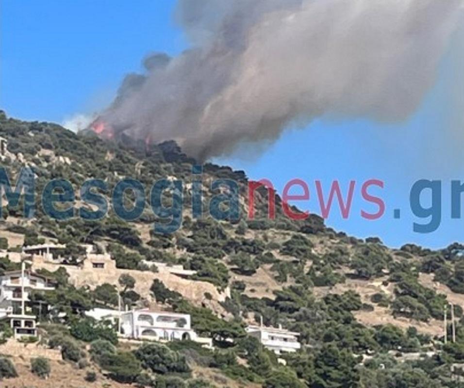 Φωτιά στην Αγία Μαρίνα Κορωπίου – Κλειστή η Αθηνών – Σουνίου