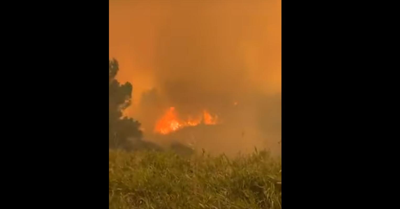 Φωτιά στο Σχίνο: Πύρινη «κόλαση» σκορπά τον όλεθρο – Αποκαλυπτικό βίντεο
