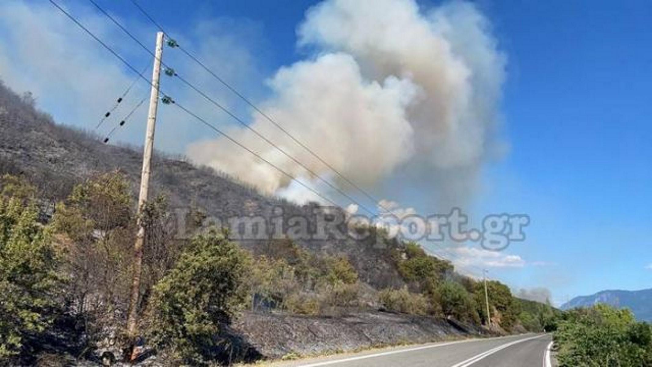 Φωτιά στη Μακρακώμη – Απειλούνται σπίτια – Έκλεισε ο δρόμος Λαμίας – Καρπενησίου (pics)