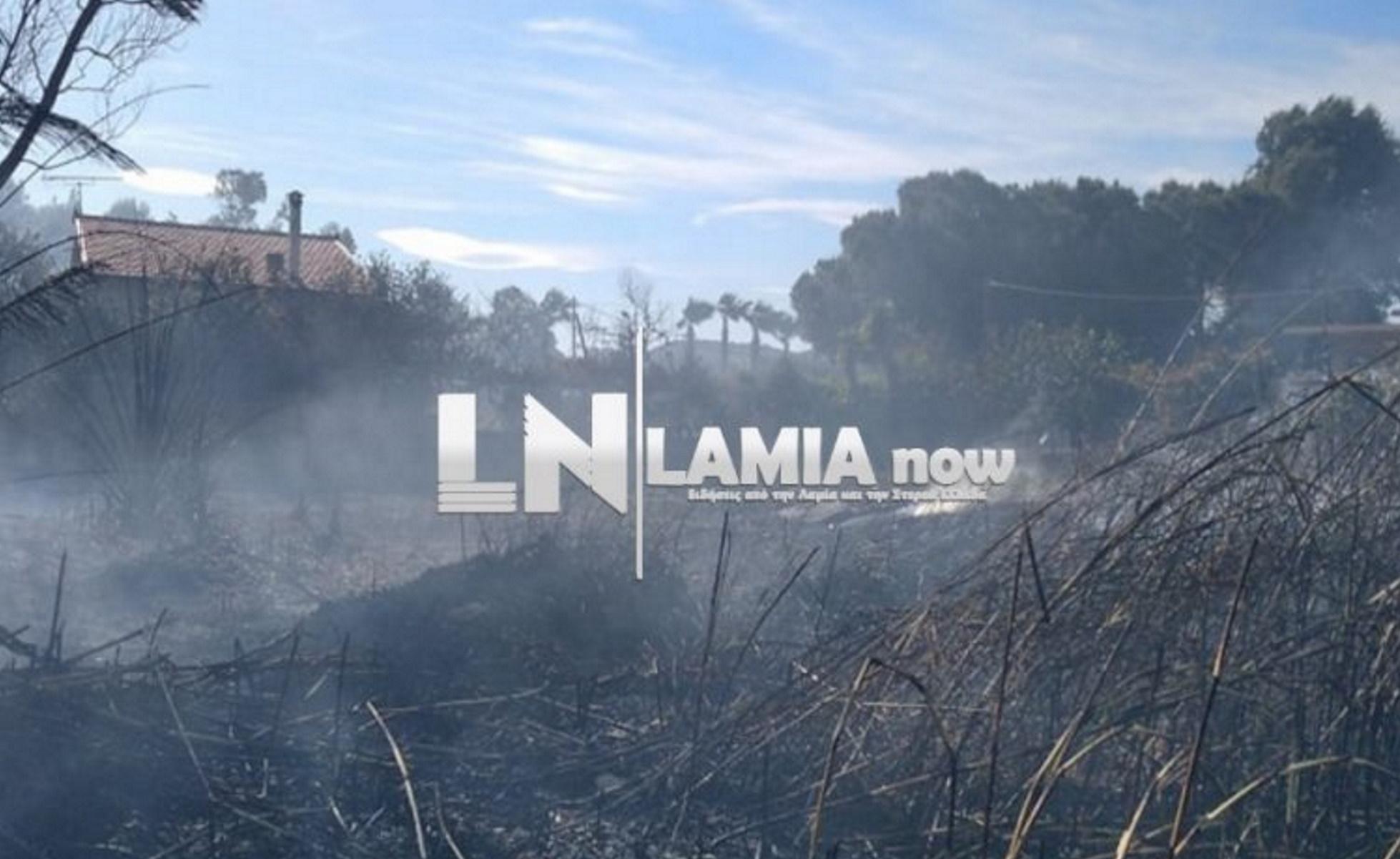 Φωτιά κοντά σε σπίτια στην Τραγάνα Φθιώτιδας (pics, video)