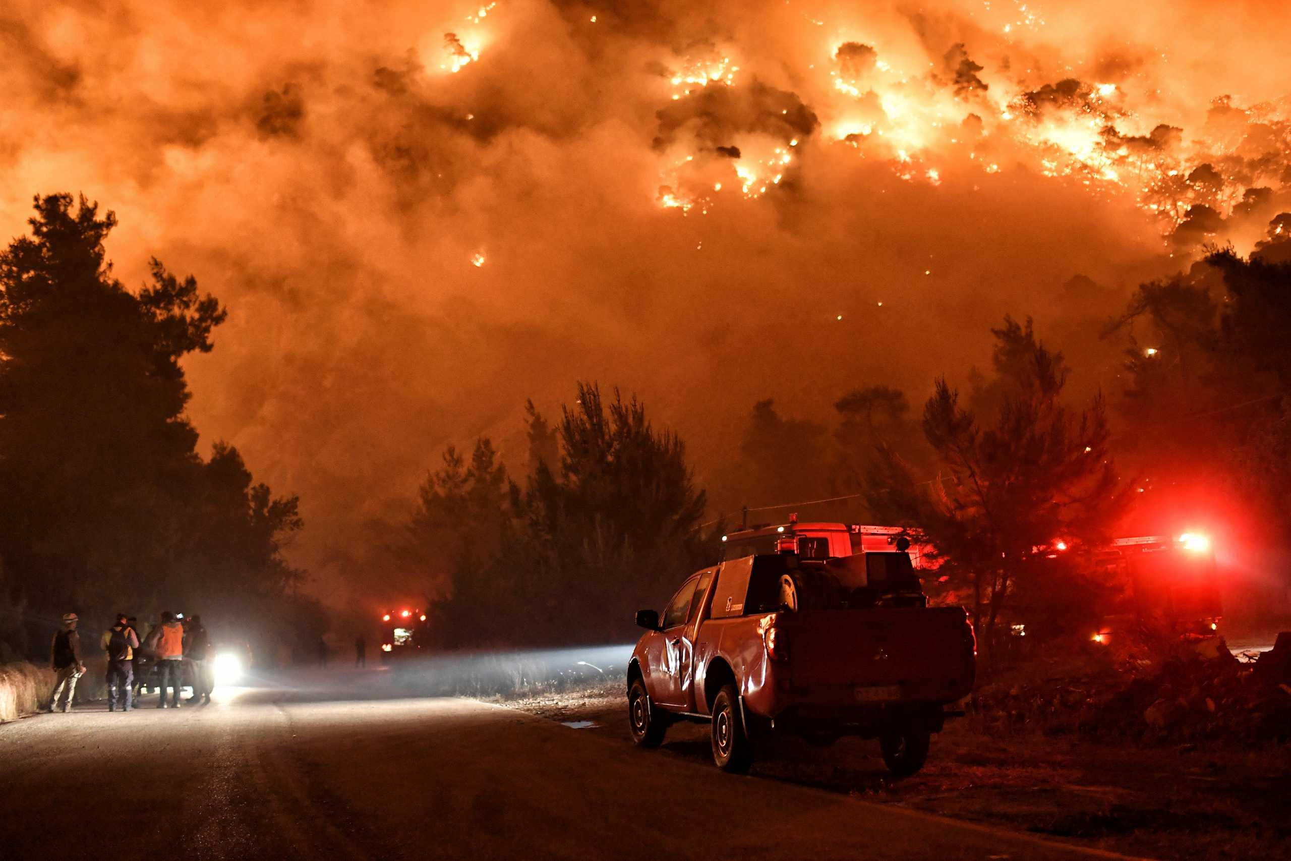 Ιωάννινα: Φωτιά αποτεφρώνει δάσος