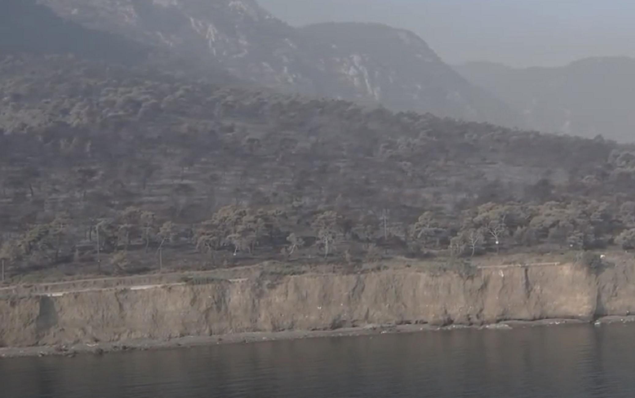 Φωτιά στον Σχίνο: Βίντεο από drone μετα την περιβαλλοντική καταστροφή – Σταμάτησε στη θάλασσα (video)