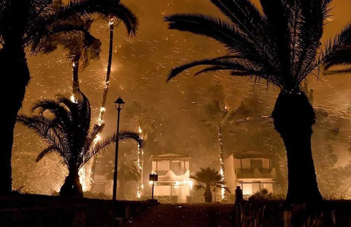 Λέκκας: Η πυρκαγιά στον Σχίνο – Τεράστιες οι επιπτώσεις στο περιβάλλον
