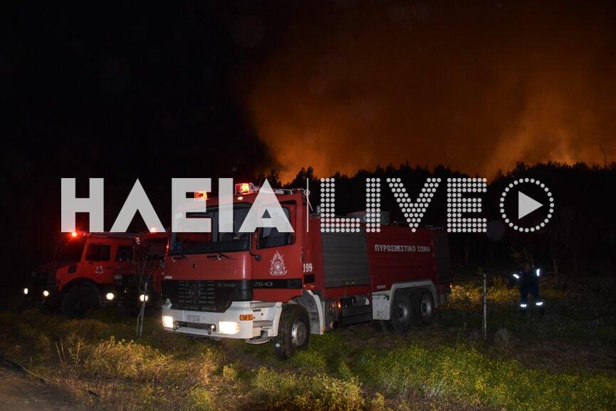 Ηλεία: Οριοθετήθηκε η μεγάλη πυρκαγιά στη Σμέρνα