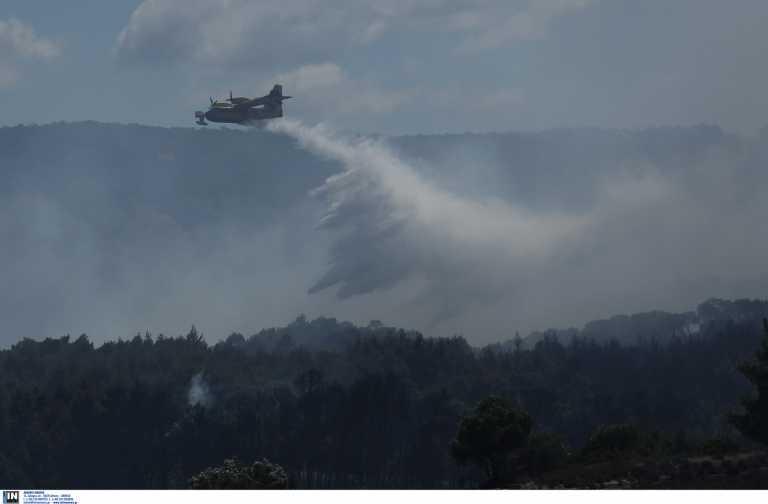 Φωτιά στα Μέγαρα - Μεγάλη κινητοποίηση της πυροσβεστικής