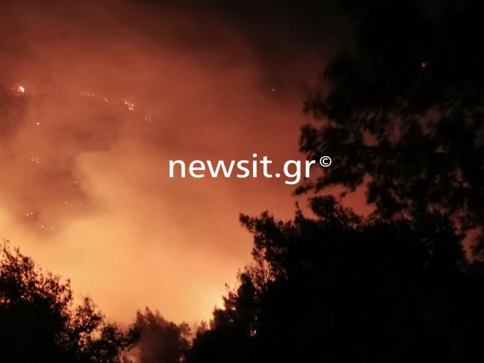 Φωτιά στο Σχίνο: Εκκενώνονται και άλλοι οικισμοί – Νέο μήνυμα από το 112