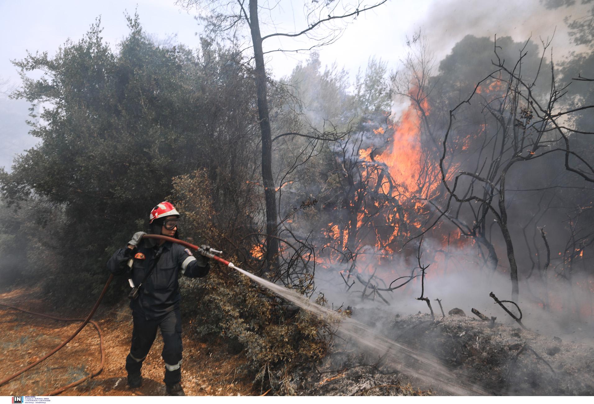 Φωτιά στα Μέγαρα: Αναζωπύρωση του πύρινου μετώπου – Εκκενώνεται ο οικισμός Παπαγιαννέικα
