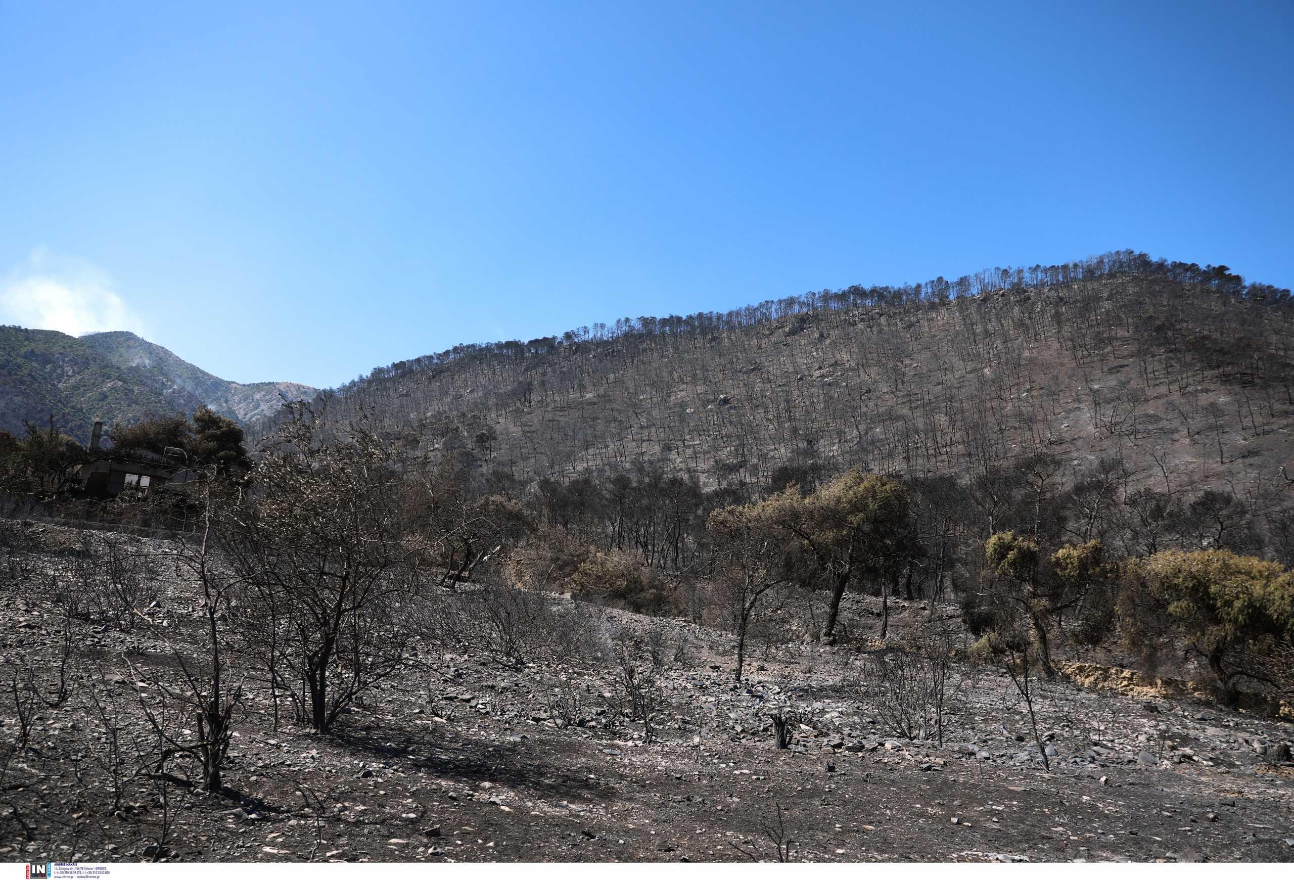Φωτιά στα Γεράνεια Όρη: Η μεγαλύτερη δασική καταστροφή της τελευταίας 10ετίας