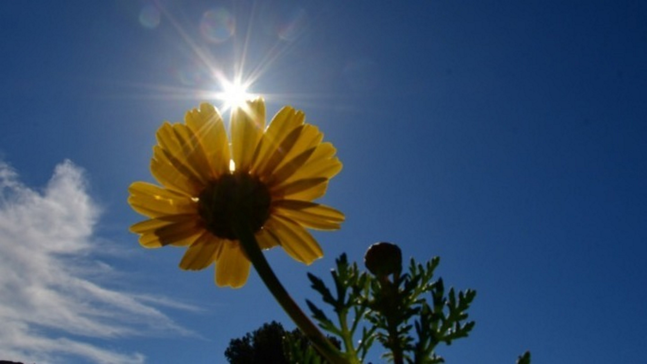 Καιρός σήμερα: Καλοκαιρινός με ήλιο και 30 βαθμούς Κελσίου