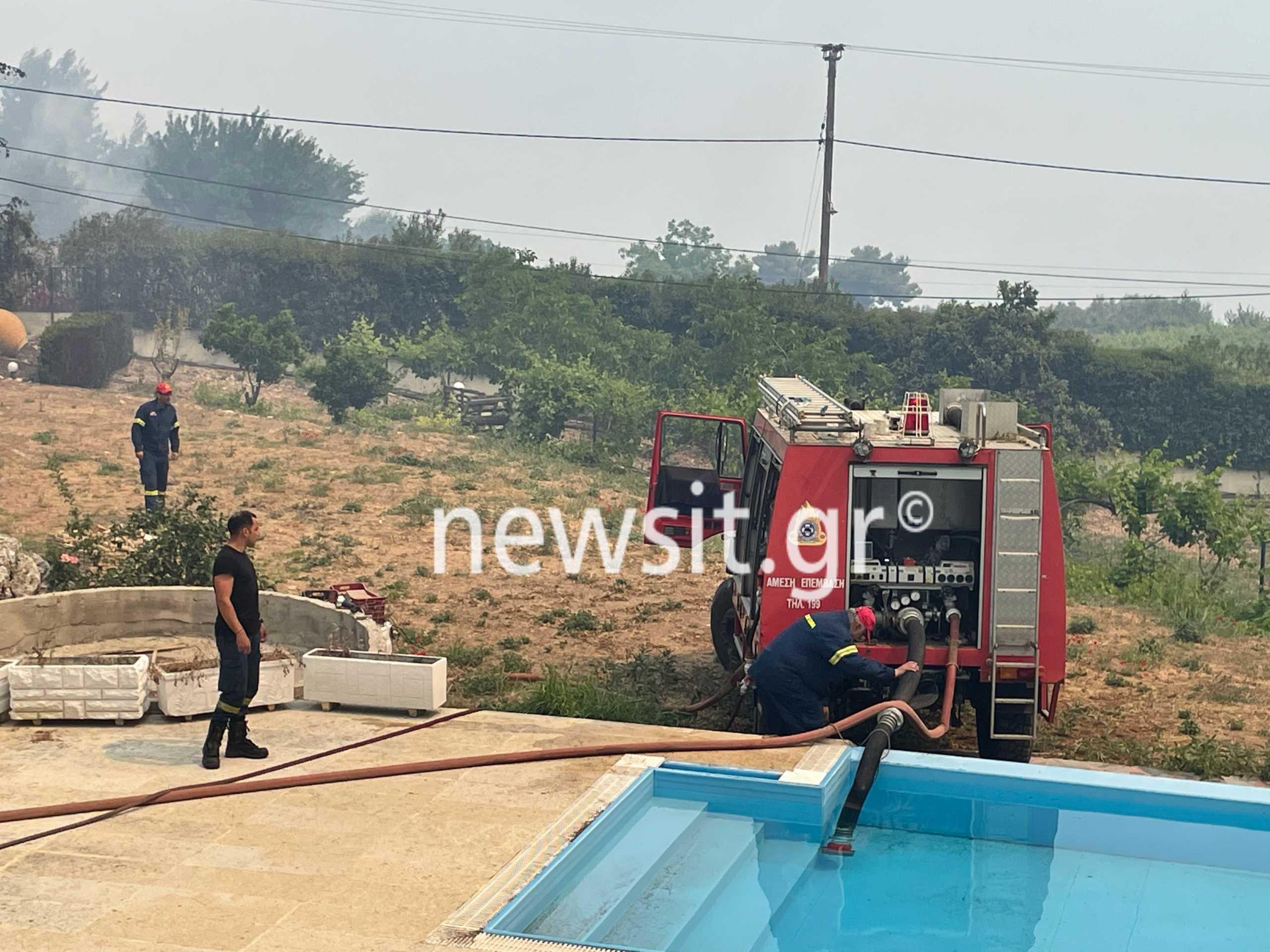 Φωτιά στον Σχίνο: Η στιγμή που πυροσβέστες παίρνουν νερό από πισίνα εξοχικού για να συνεχίσουν (pics, video)