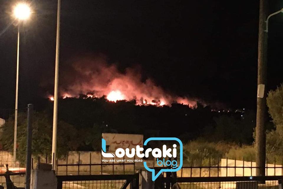 Φωτιά στο Σχίνο Κορινθίας: Πληροφορίες πως καίγονται σπίτια – Εντολή εκκένωσης του οικισμού (pics, video)