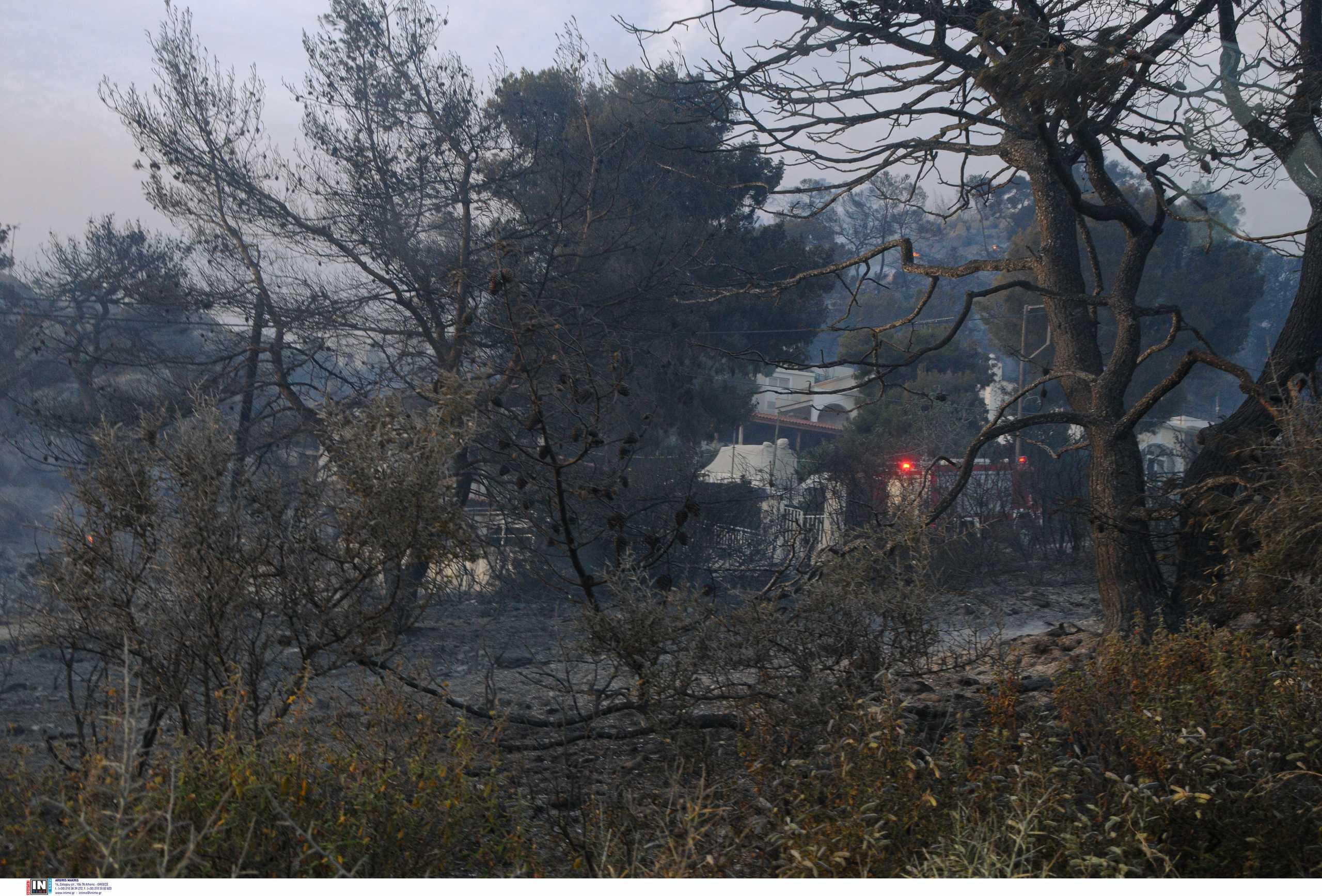 Φωτιά στα Γεράνεια Όρη: Σε ύφεση με διάσπαρτες εστίες – Τι λέει η Πυροσβεστική