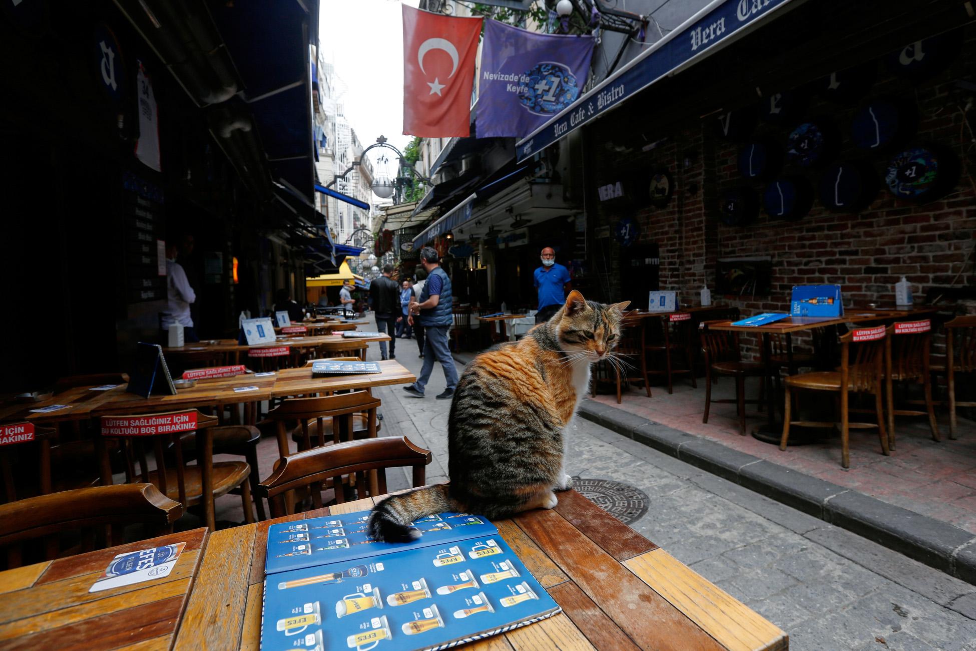 Κορονοϊός: 59 νεκροί και πάνω από 5.500 νέα κρούσματα στην Τουρκία