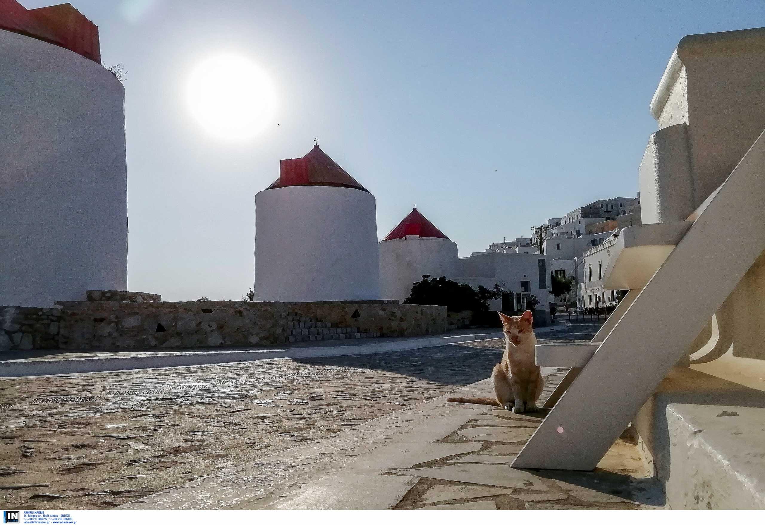 Αστυπάλαια: Το πρώτο «smart και πράσινο» νησί στη Μεσόγειο – Τι είναι η πλατφόρμα e-astypalea