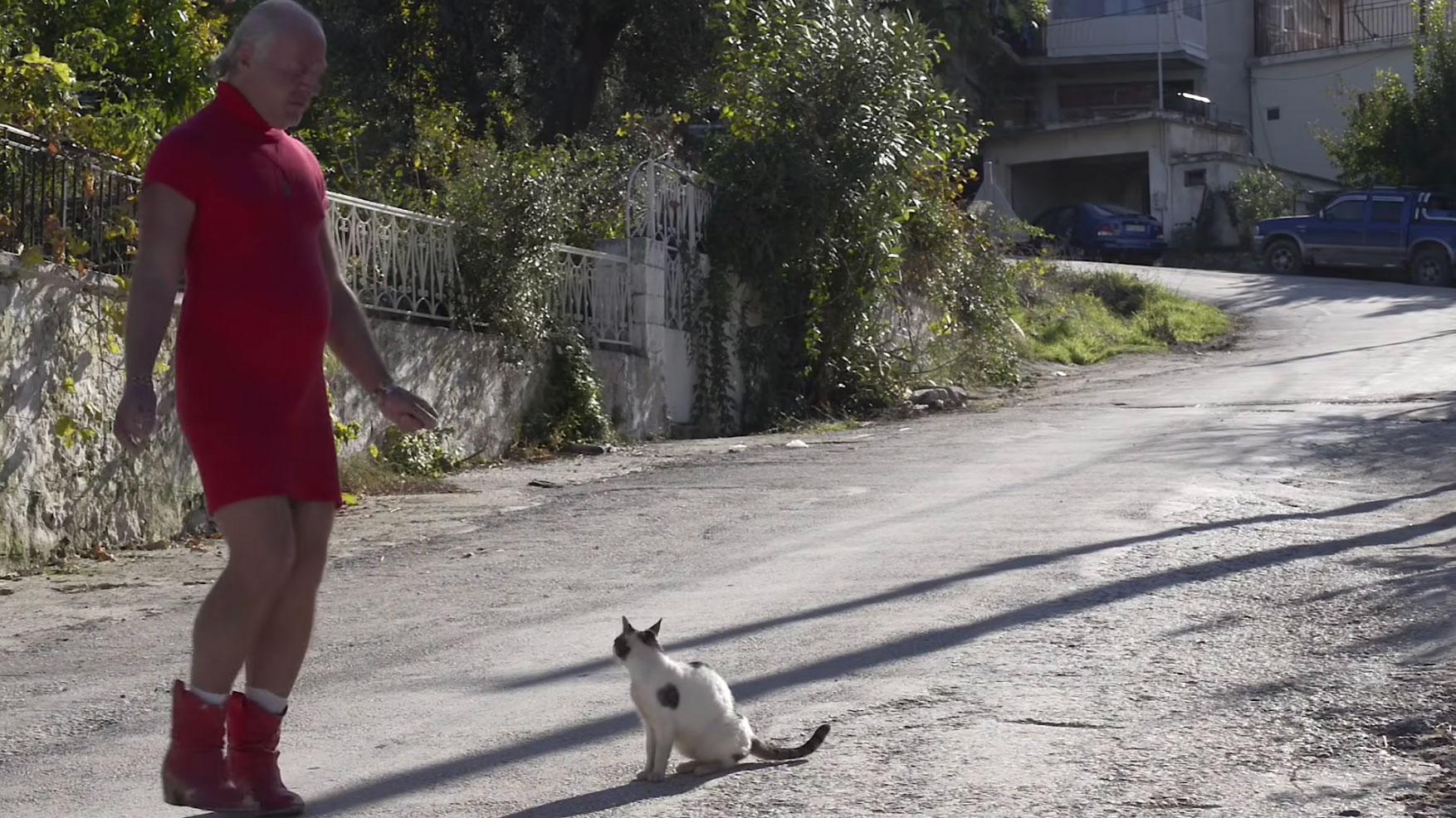 Θρίλερ με την Δημήτρη της Λέσβου: Φόβοι πως έπεσε θύμα τροχαίου – Βαλλιανάτος: «Αναγνωρίστηκε η σορός»