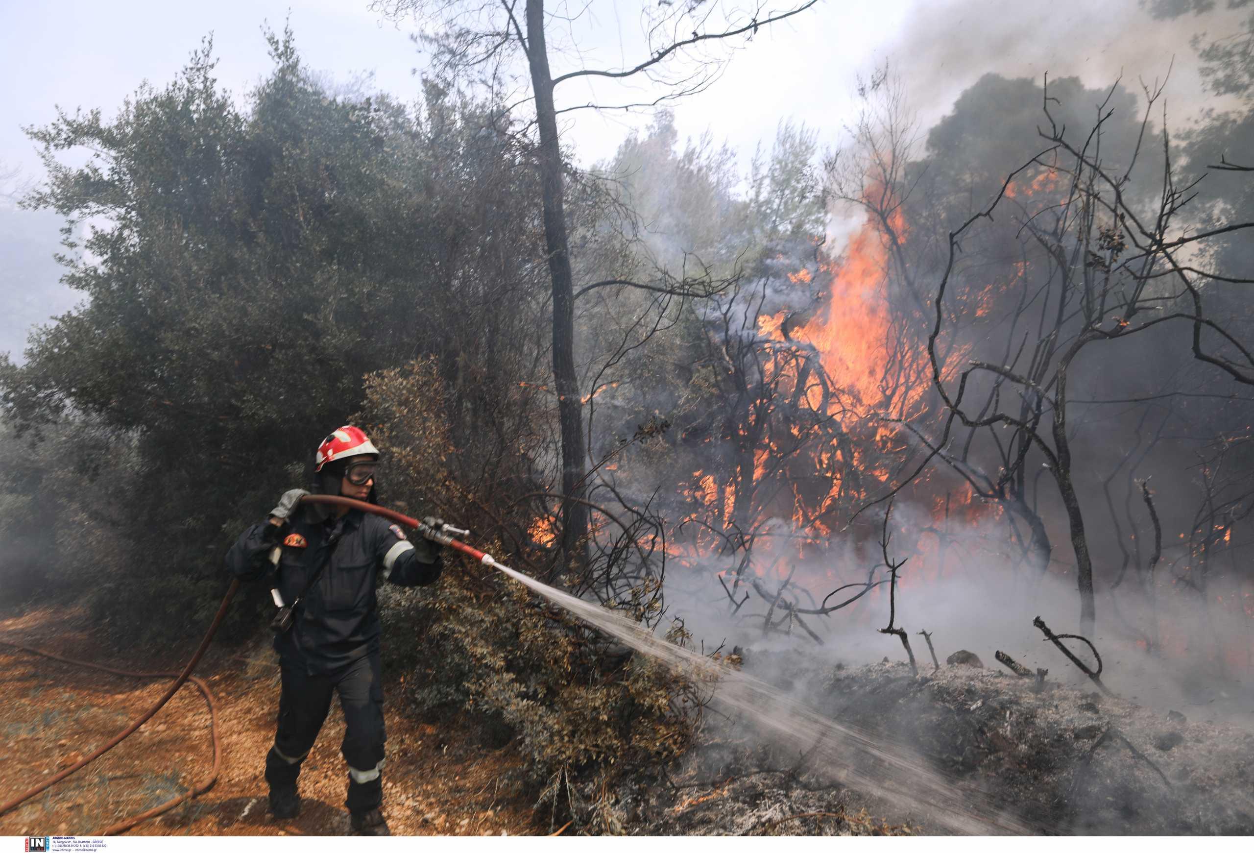 Φωτιές και σε Βοιωτία – Λακωνία