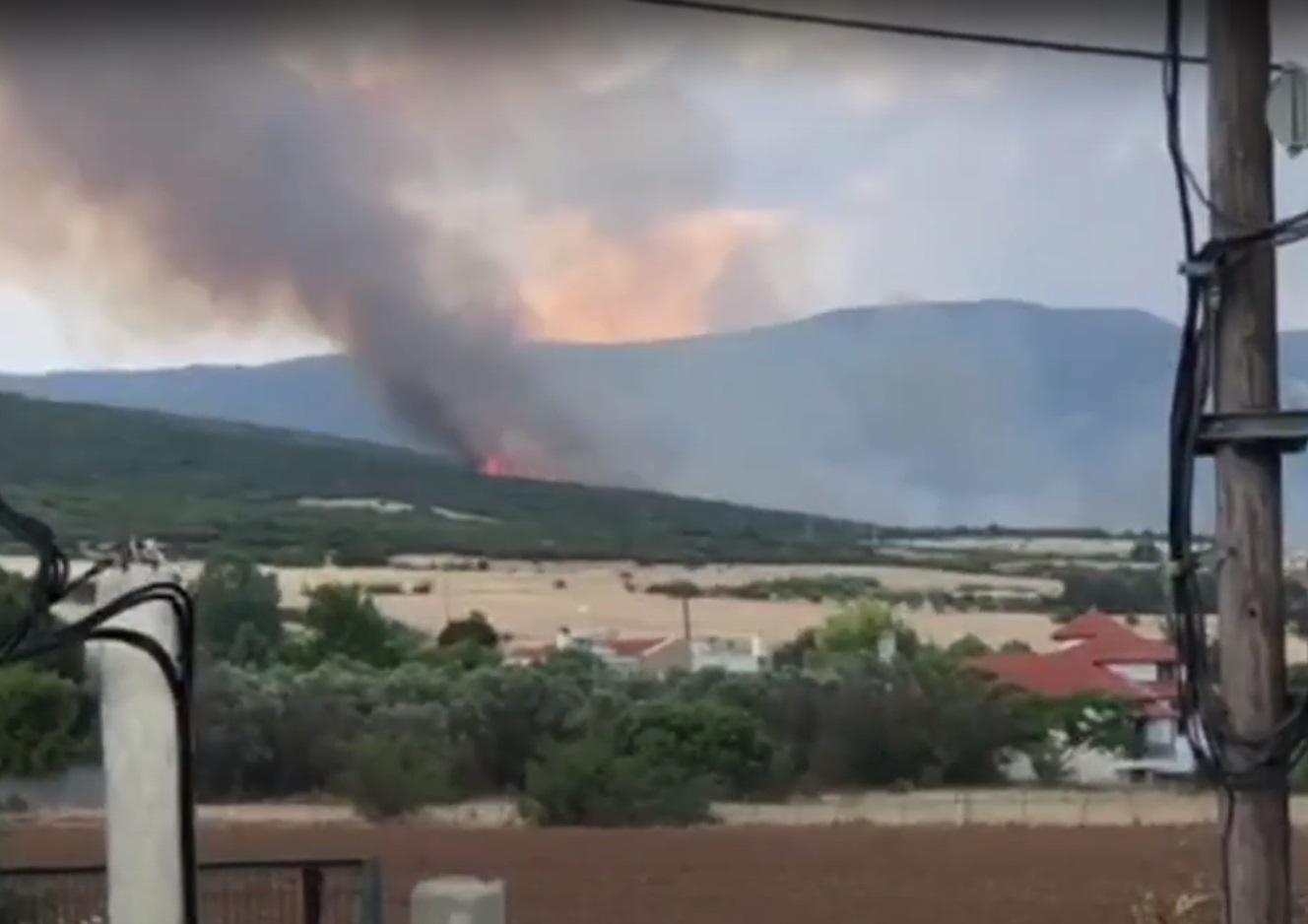 Θεσσαλονίκη: Μεγάλη φωτιά στη Θέρμη