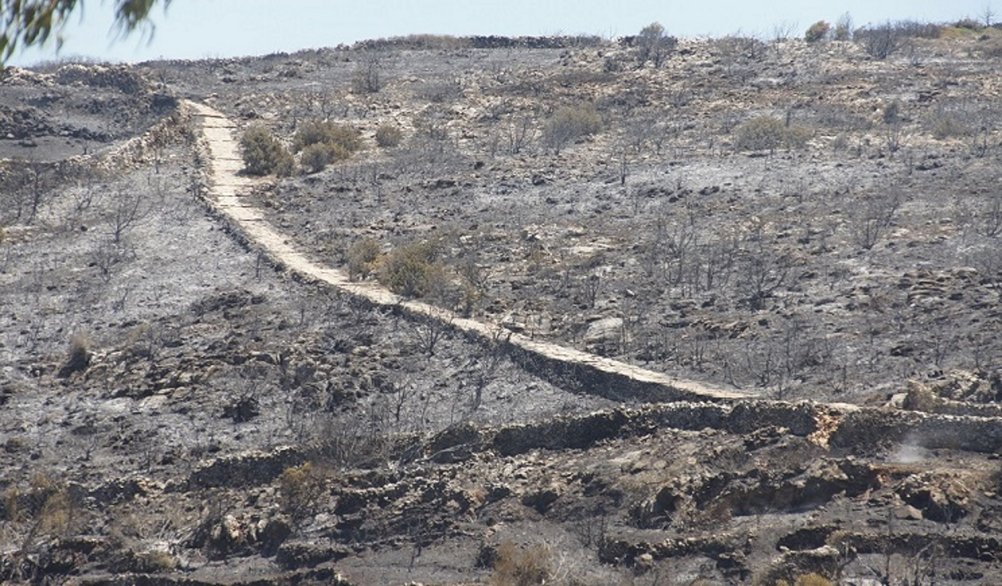 Φωτιά στην Πάρο: Κρανίου τόπος – Στάχτη και αποκαΐδια άφησε η πύρινη λαίλαπα (video)