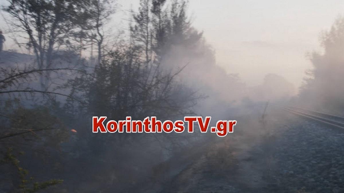 Κόρινθος: Φωτιά στις γραμμές του Προαστιακού – Διακόπηκαν δρομολόγια (pics, vids)