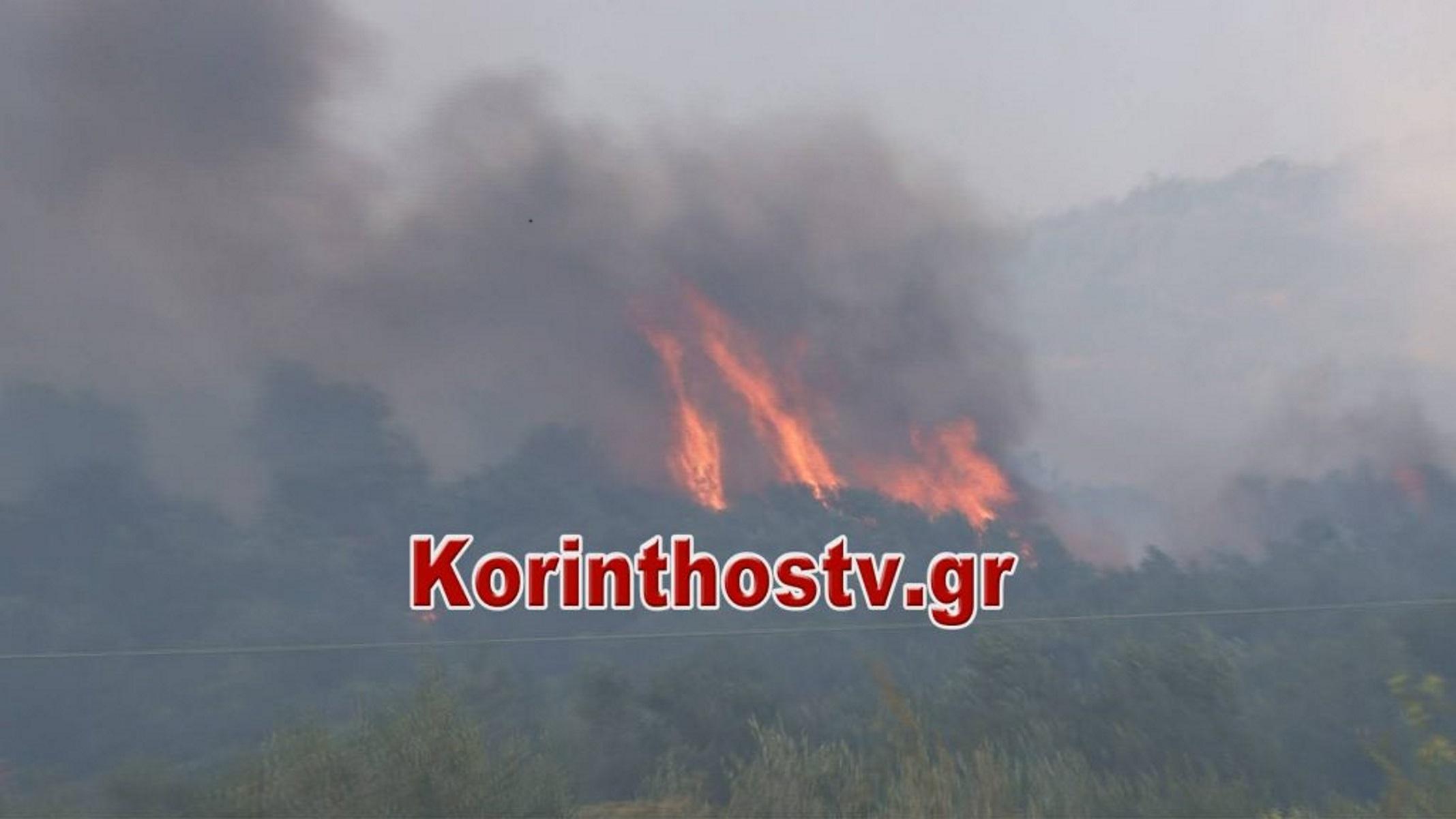 Φωτιά στα Εξαμίλια Κορινθίας (pic)