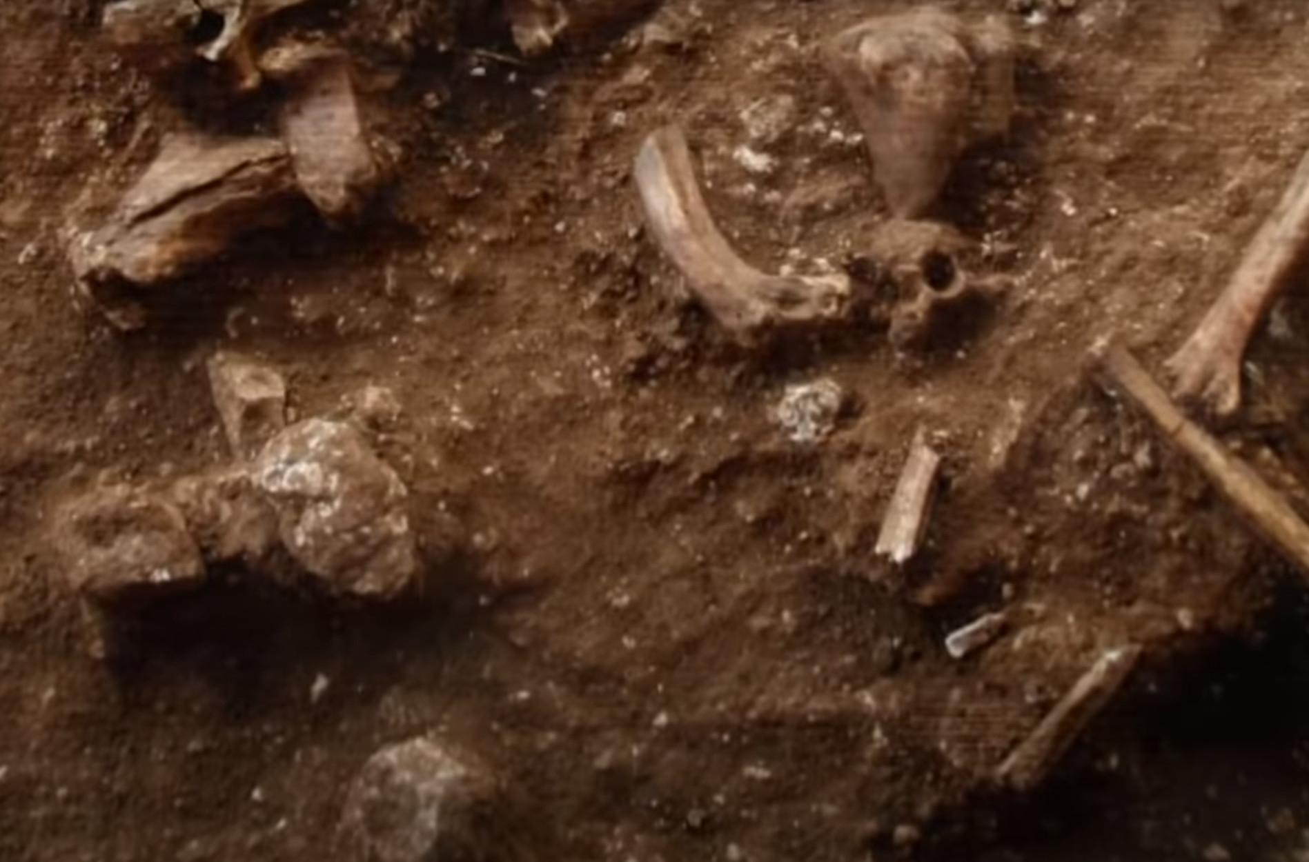 Ανακαλύφθηκε νέο είδος προϊστορικού ανθρώπου! Ανατρέπει όσα ξέραμε για τους Νεάντερταλ (video)