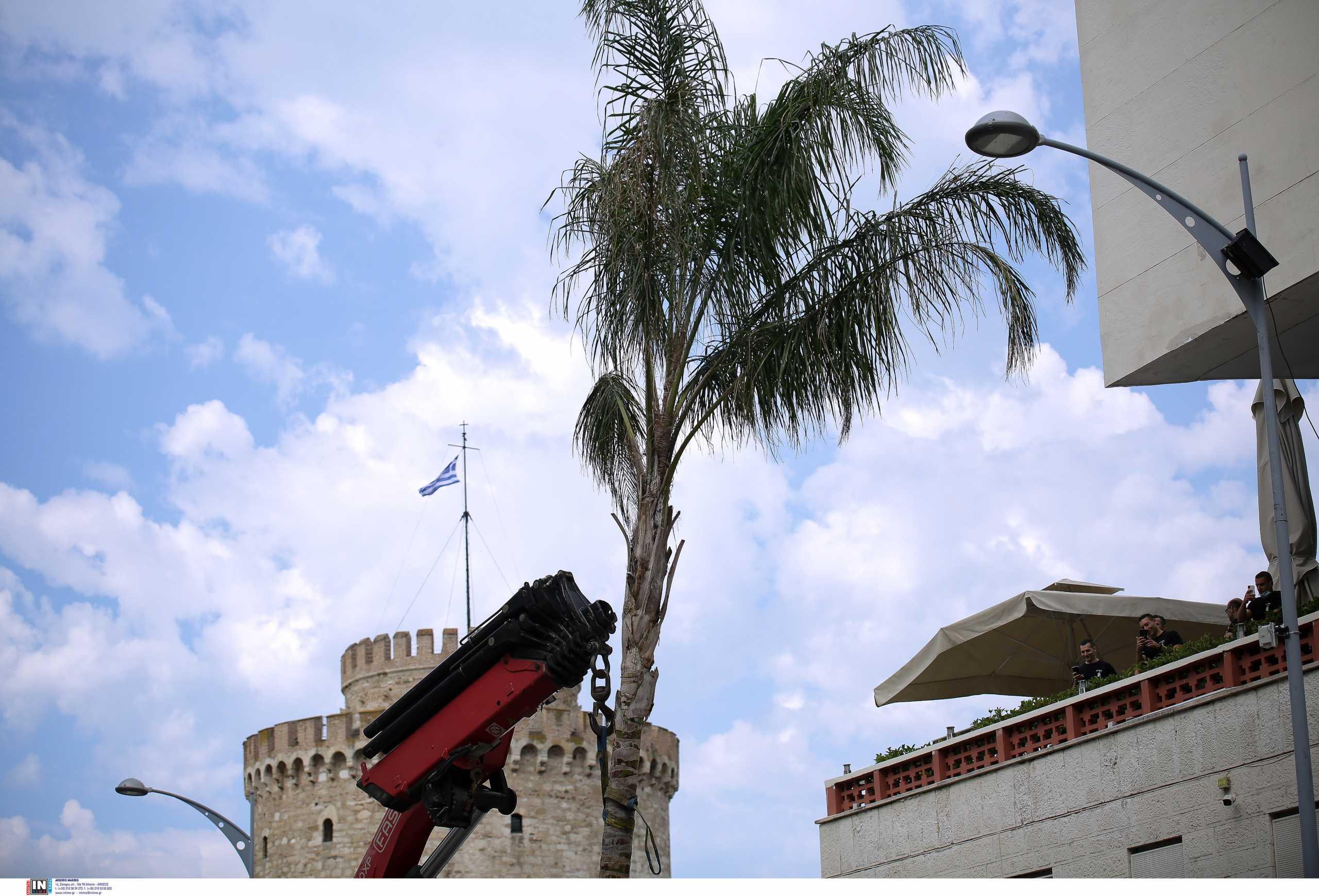 Αντόνιο Μπαντέρας-Γυρίσματα στη Θεσσαλονίκη: Δείτε τη σκηνή με τους δεκάδες κομπάρσους που ξαφνικά αρχίζουν να κινούνται