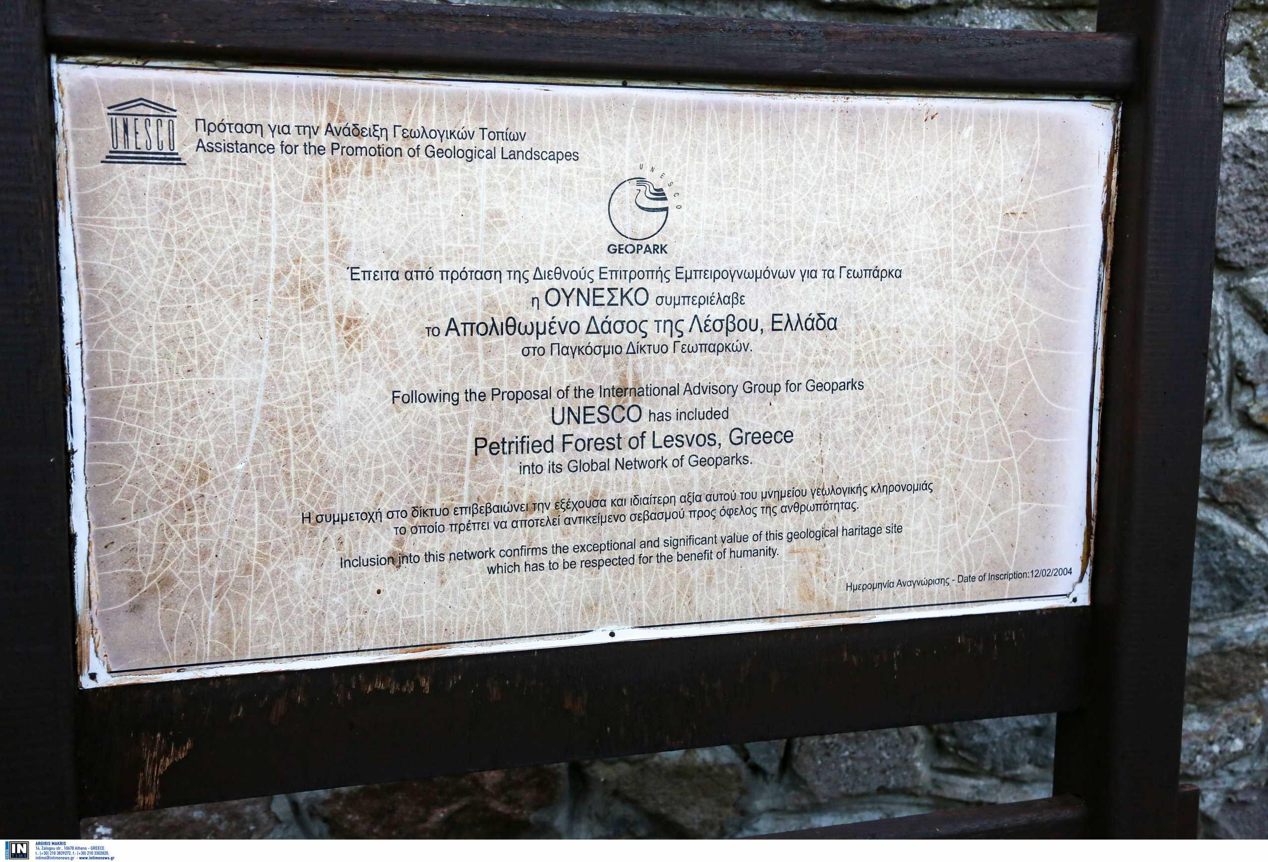 Ομοίωμα αλιγάτορα που έζησε στη Λέσβο πριν 18,5 εκατομμύρια χρόνια έρχεται στο Μουσείο Φυσικής Ιστορίας Απολιθωμένου Δάσους
