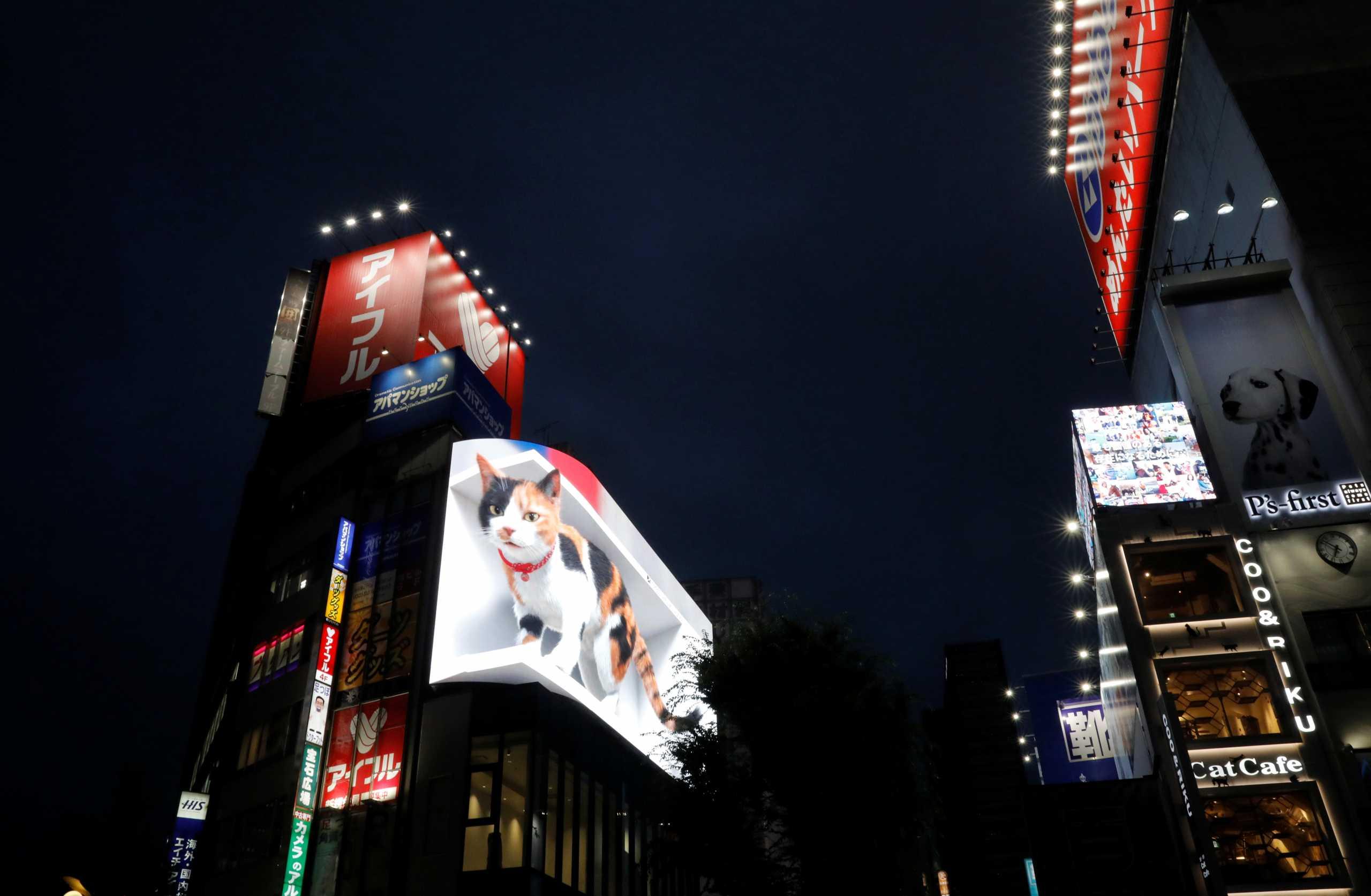 Η τεράστια τρισδιάστατη γάτα που κάνει τα κεφάλια να γυρίζουν στο Τόκιο
