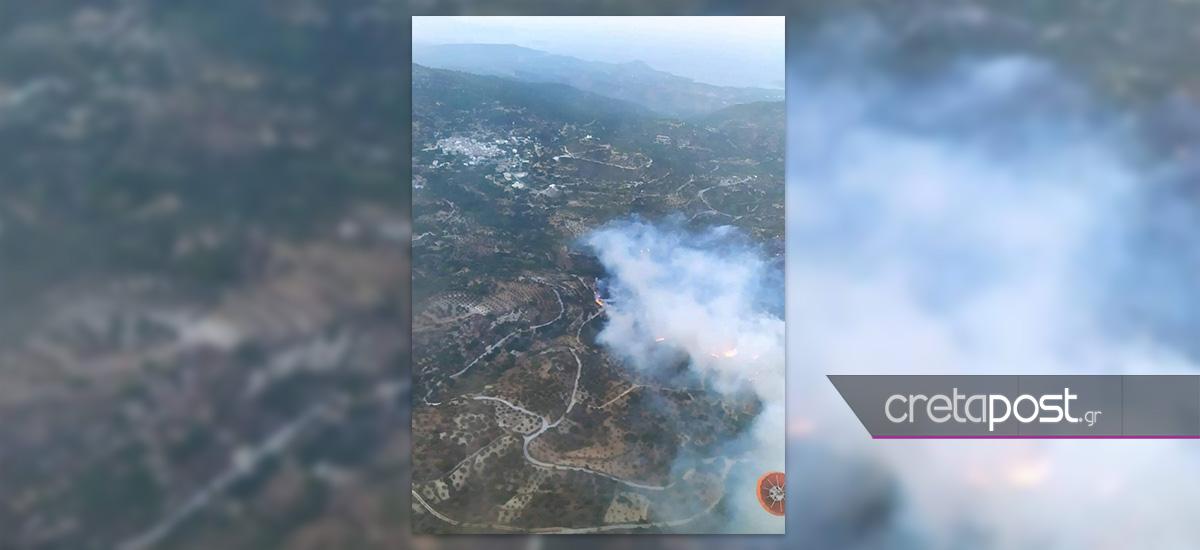 Κρήτη: Μεγάλη φωτιά στο δάσος της Πρίνας στο Λασίθι