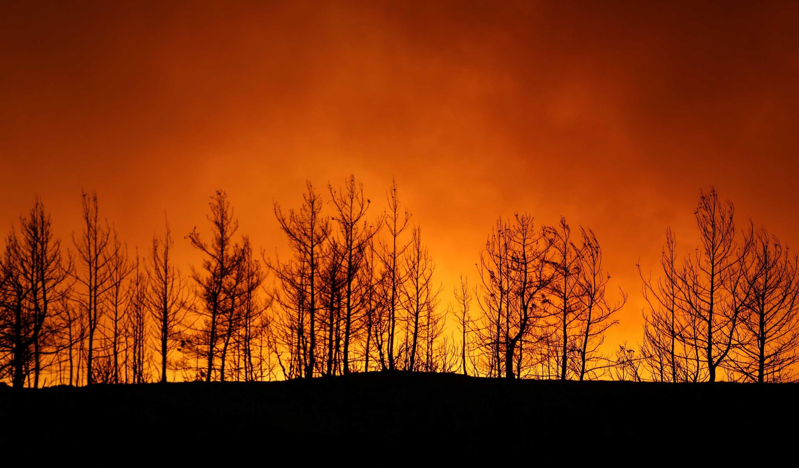 Αντιναύαρχος για τις πυρκαγιές στην Τουρκία: Είμαστε αντιμέτωποι με την τρομοκρατία της Ελλάδας και του PKK