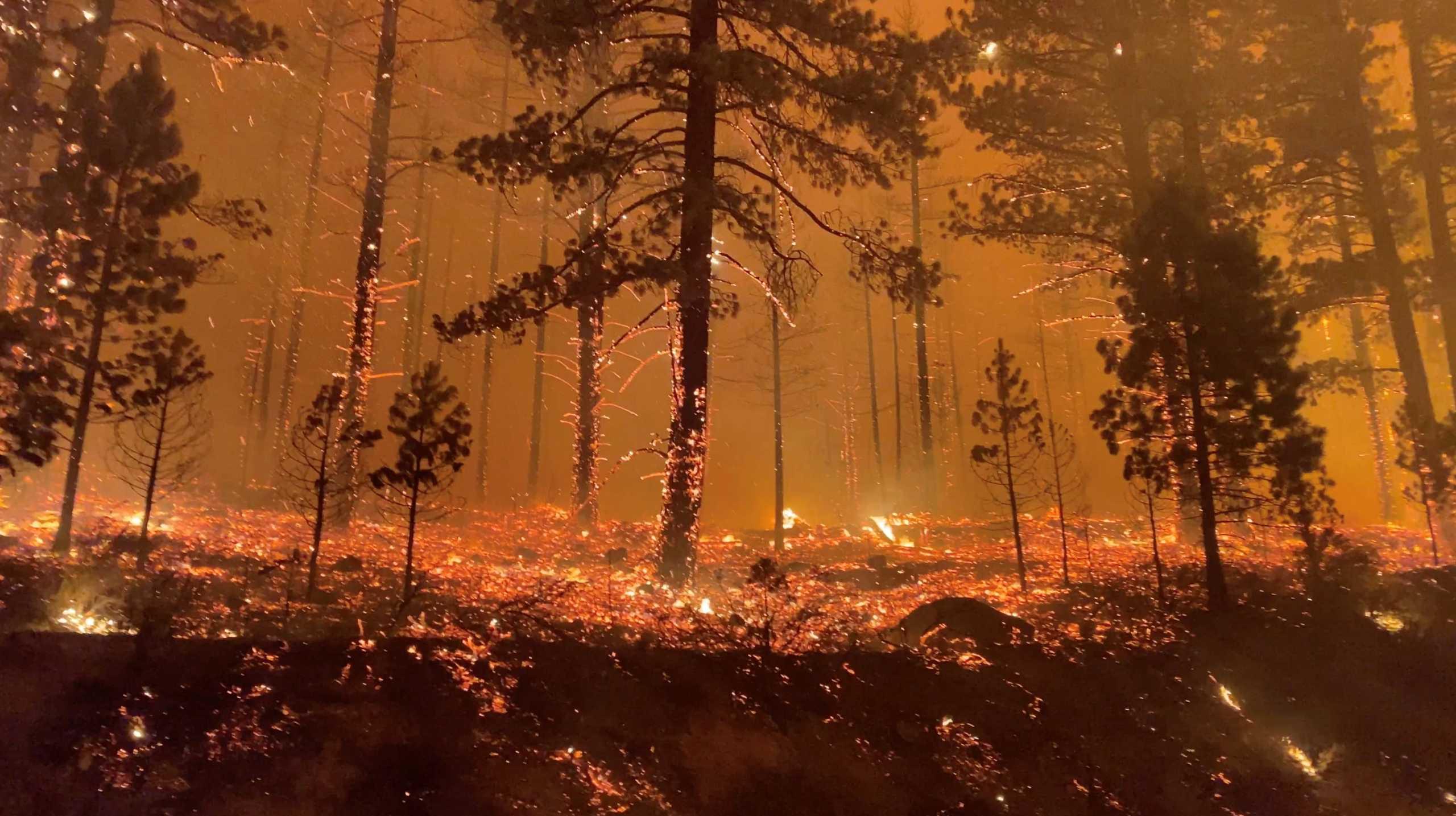 Φωτιές κατακαίουν και πάλι την Καλιφόρνια – Κατηγορούμενη ξανά η «συνήθης ύποπτη» PG&E